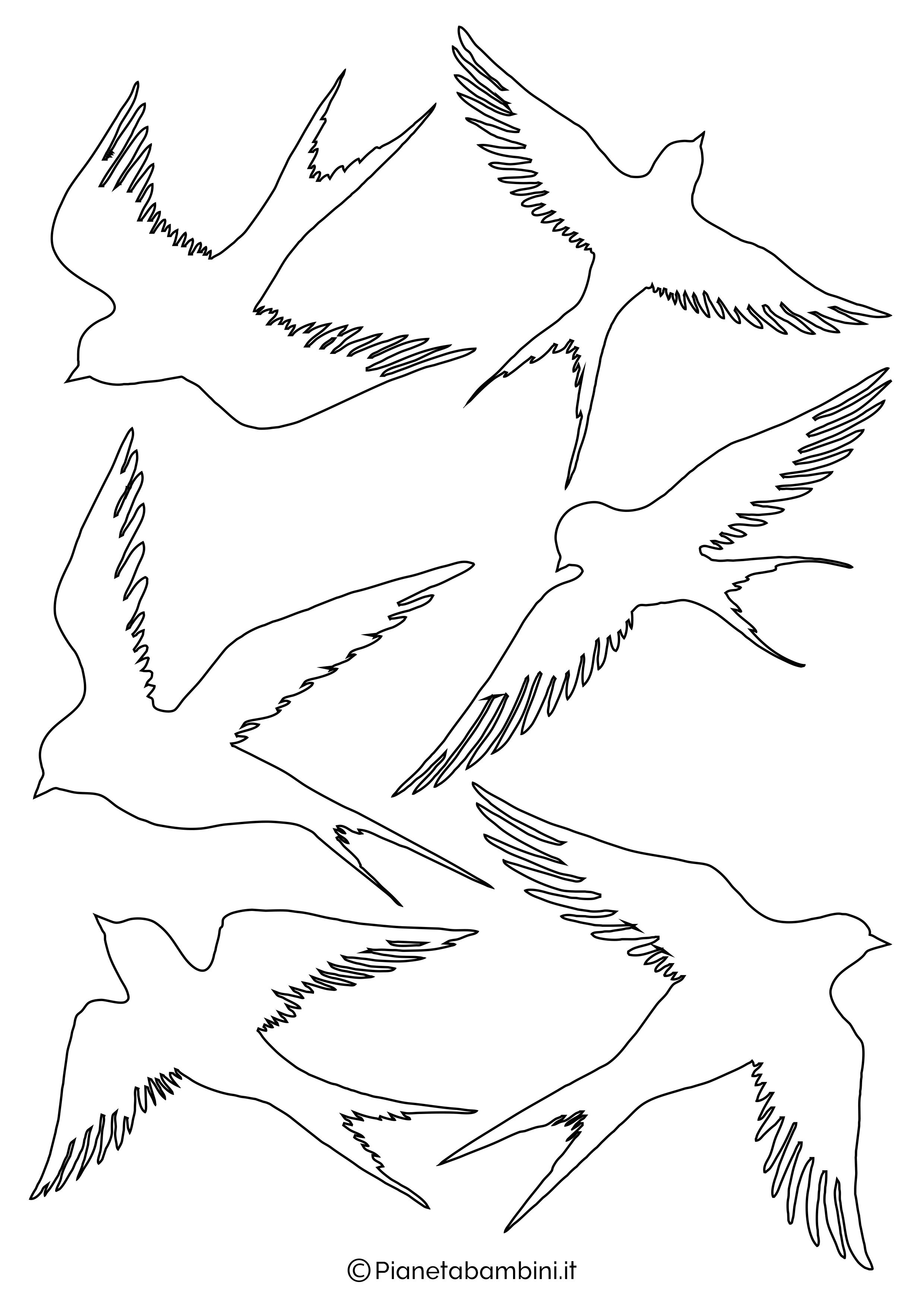 Sagome di rondini medie da stampare 3