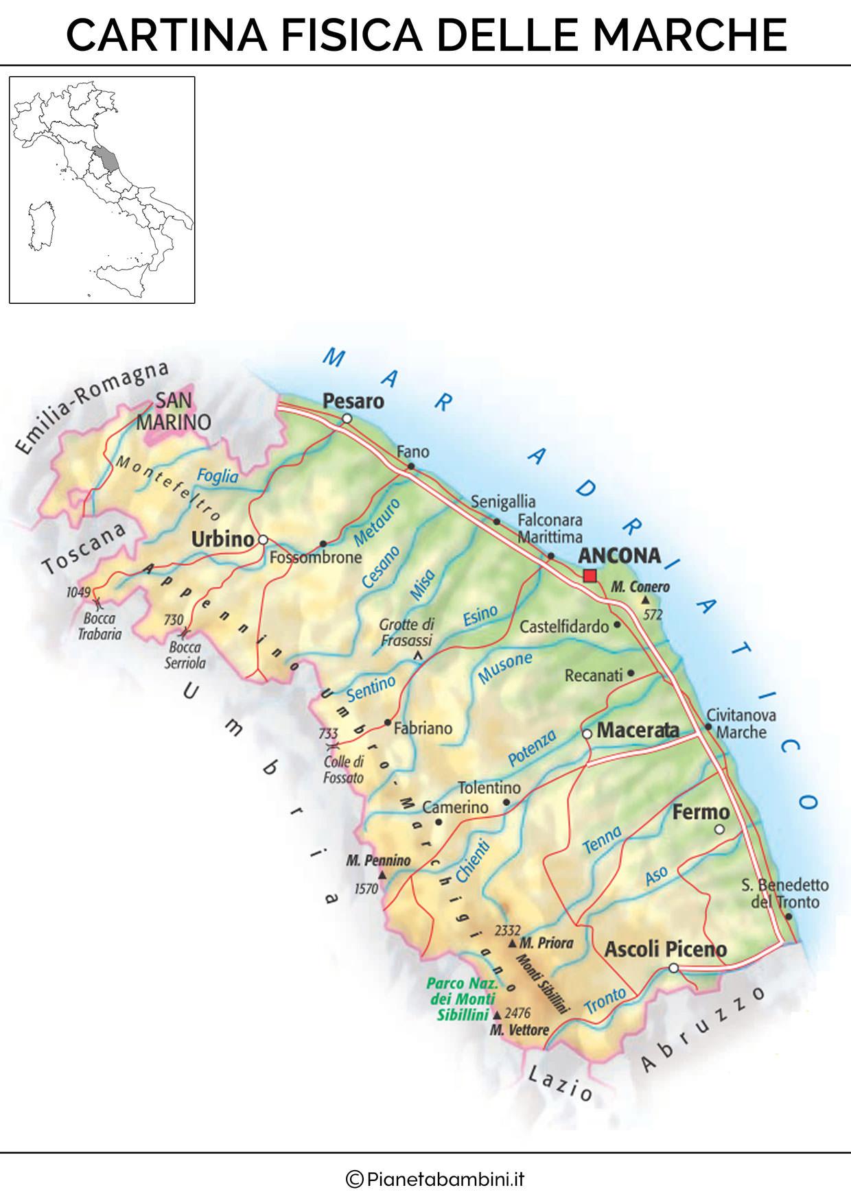 Cartina delle Marche in versione fisica
