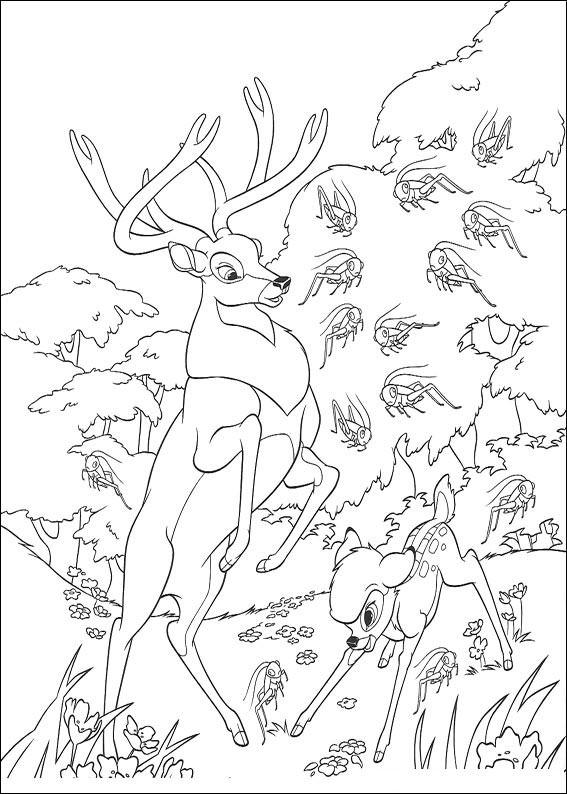 Bambi-40
