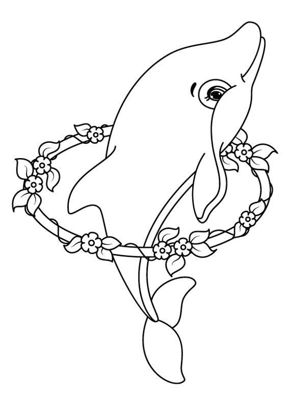 Pin disegno il delfino femmina da colorare 660x847jpg on for Delfino disegno da colorare
