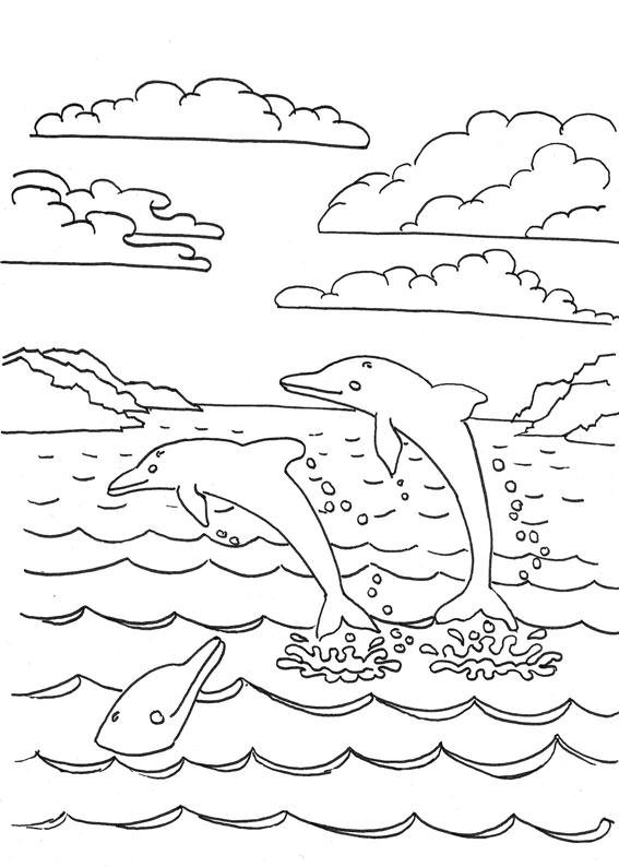 Delfini-15