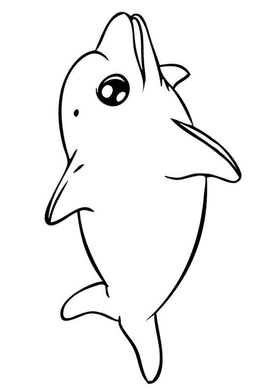 30 disegni di delfini da colorare - Stampare pagine da colorare ...