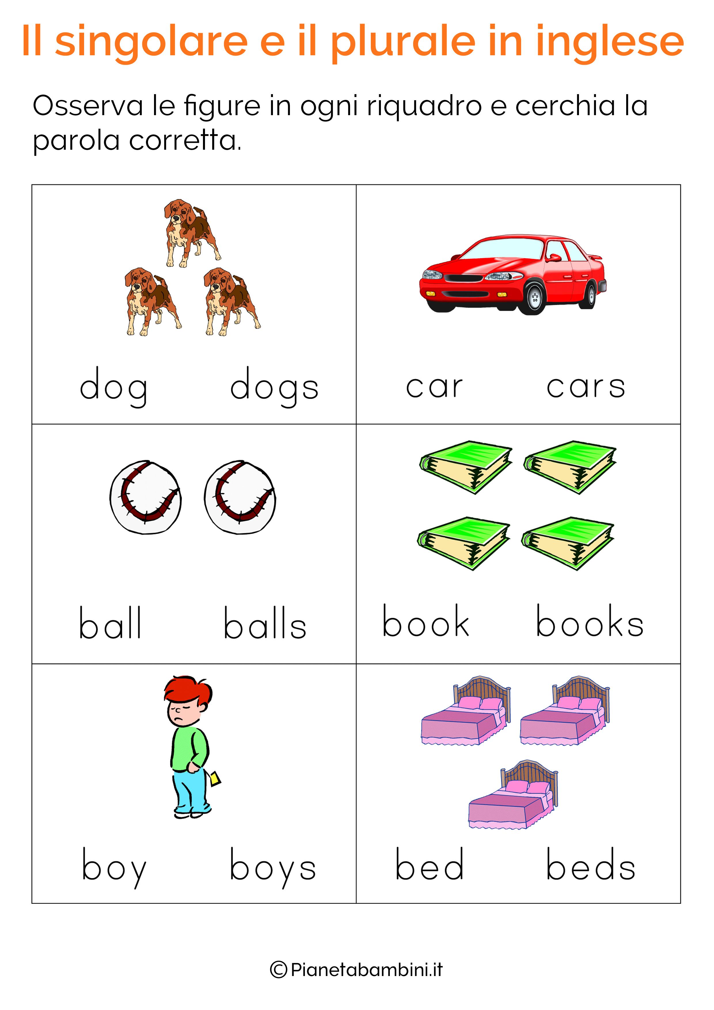 Eccezionale Esercizi sul Singolare e Plurale in Inglese per Bambini da  XR54
