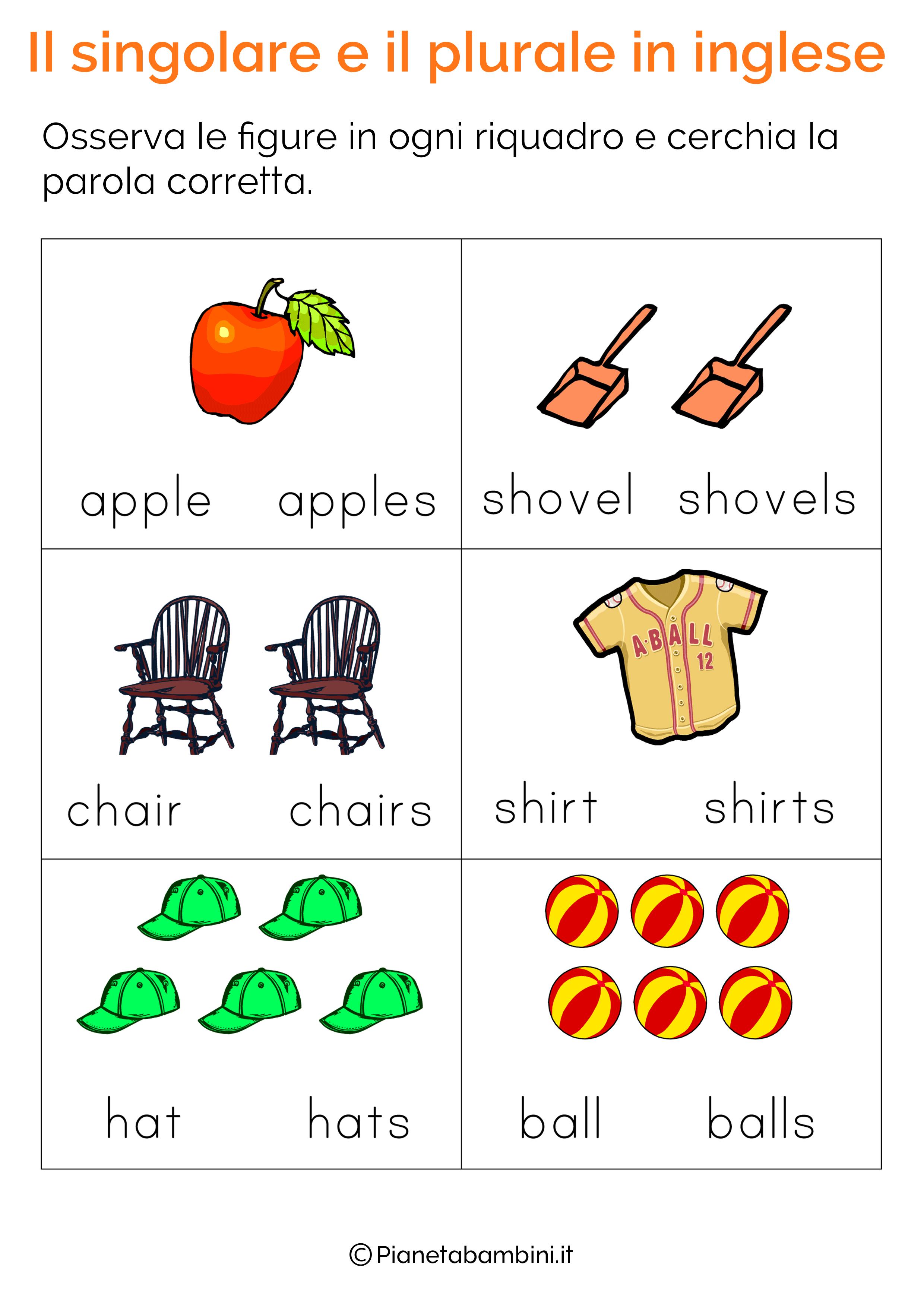 Esercizi Sul Singolare E Plurale In Inglese Per Bambini Da Stampare