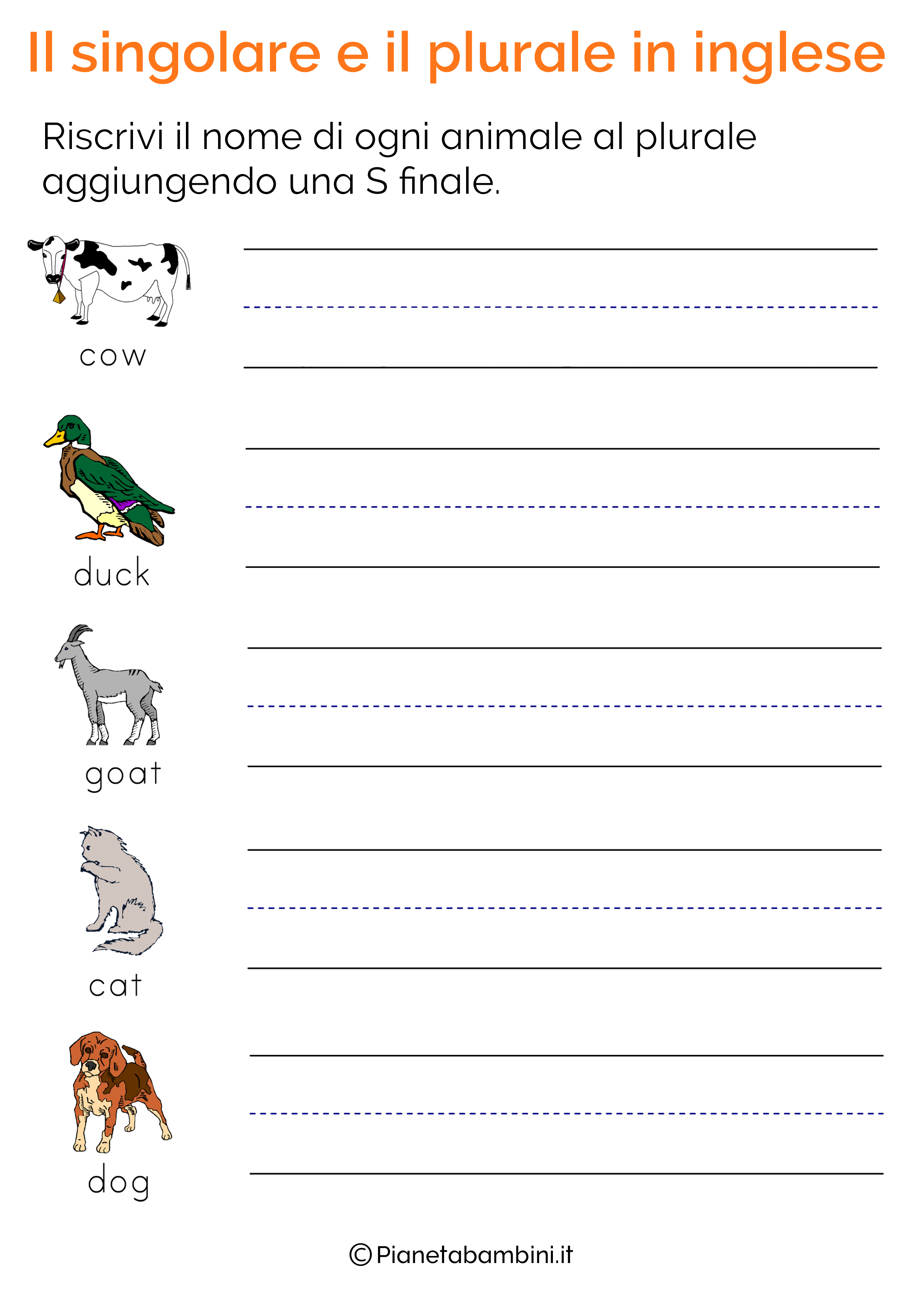 Esercizi-Singolare-Plurale-Inglese-04