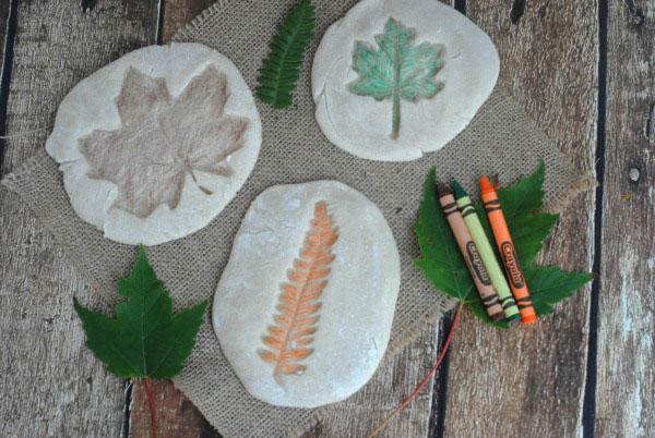 Come creare dei fossili di foglie utilizzando la pasta di sale