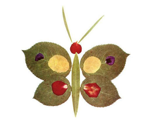 Come creare una farfalla con le foglie autunnali