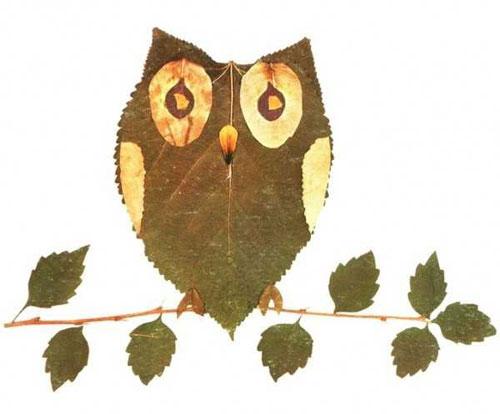 Come creare un gufo con le foglie autunnali