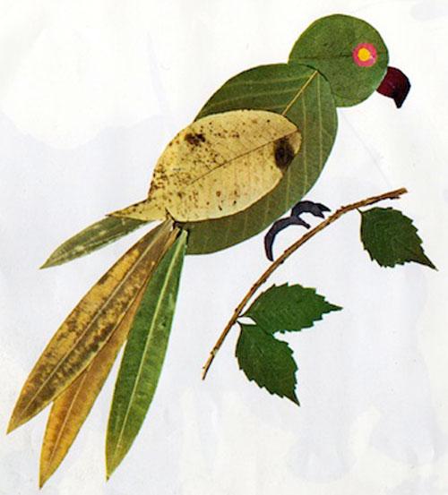 Come creare un pappagallo con le foglie autunnali