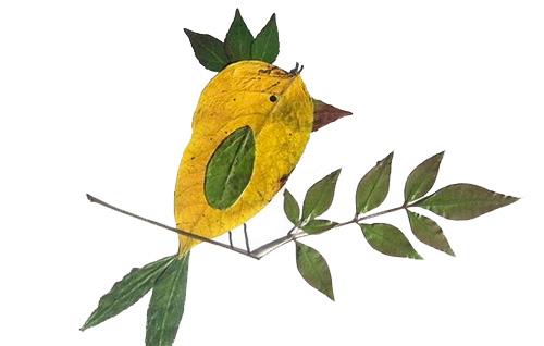 Uccello con foglie autunnali