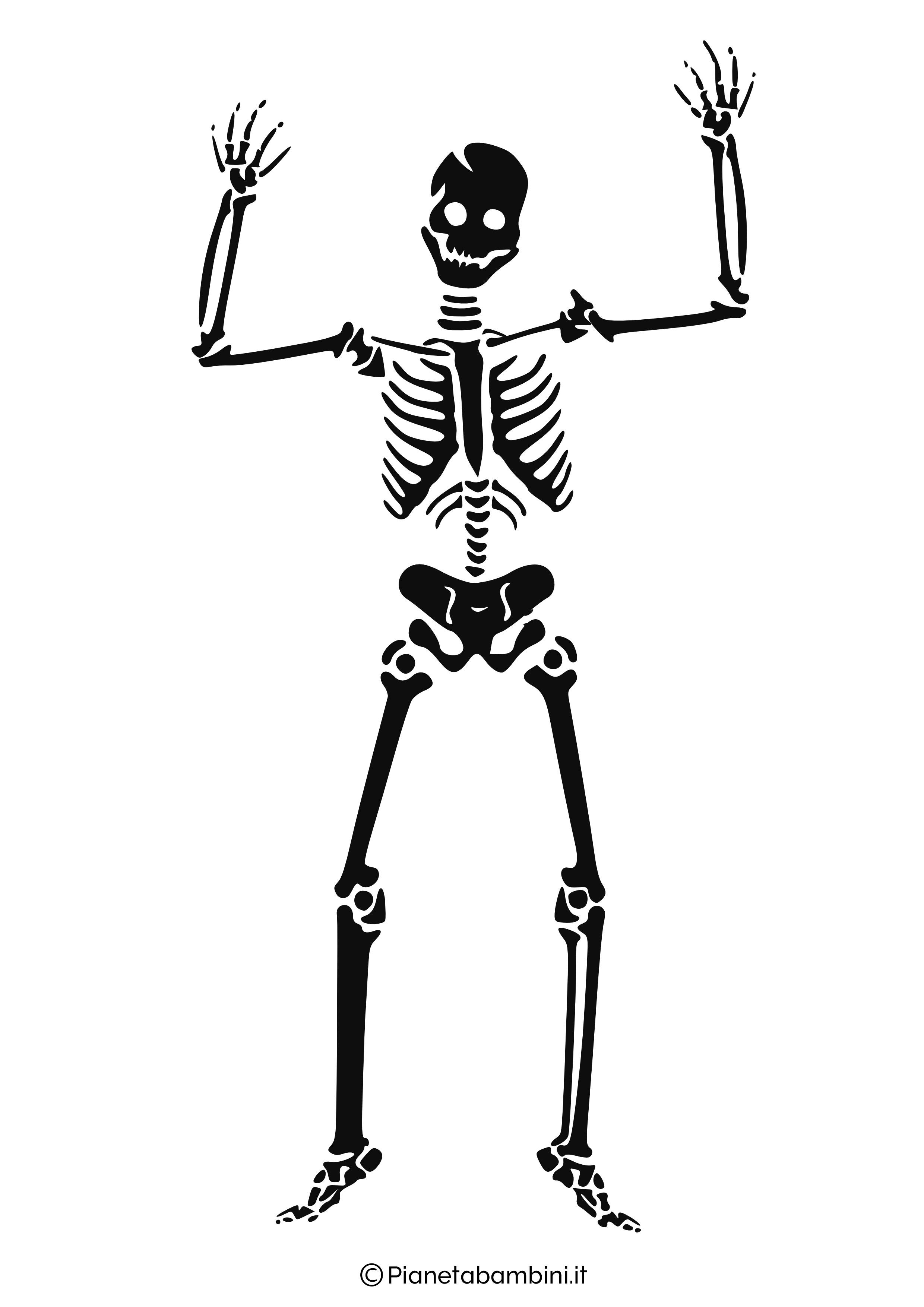 Scheletro-Halloween-5