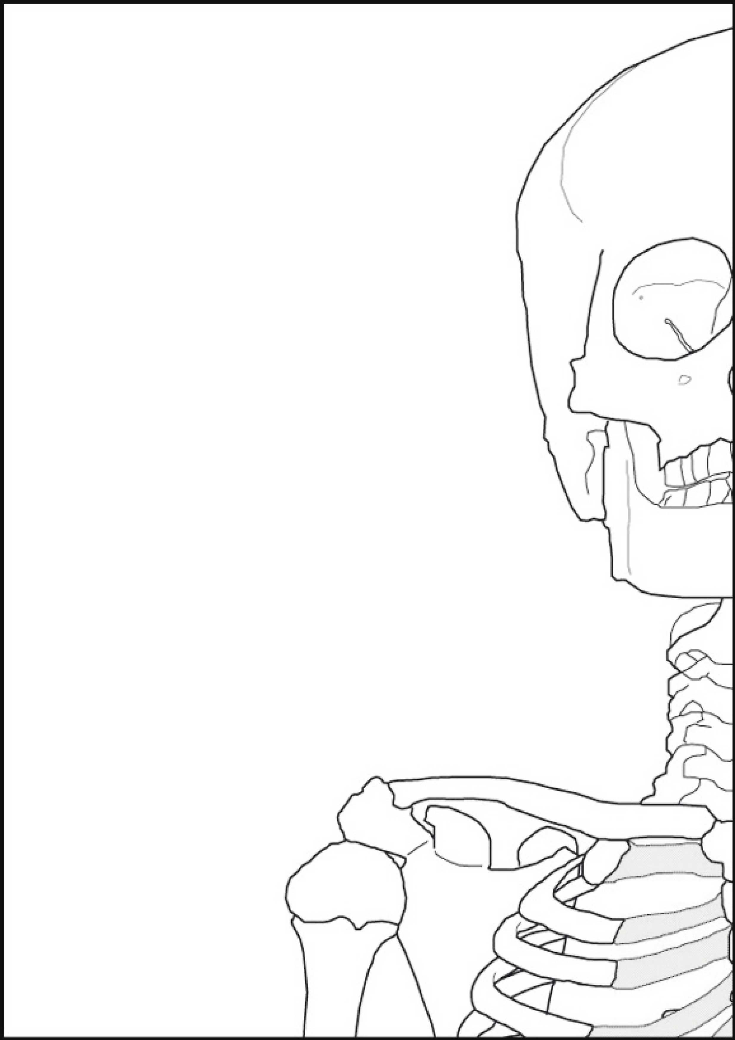 Scheletro-Umano-Murale-1-8