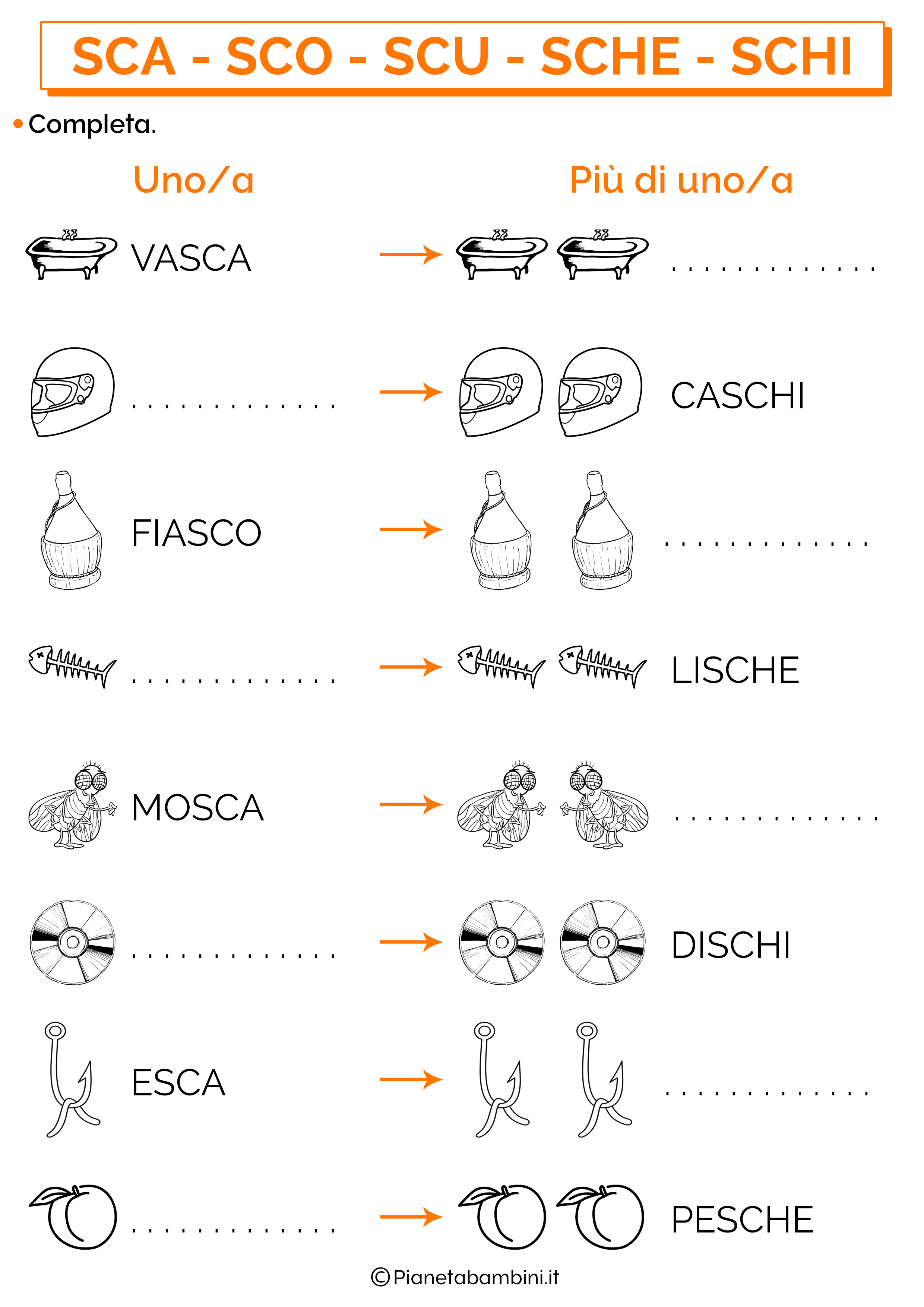 Singolare e plurale con SCA SCO SCU SCHE SCHI