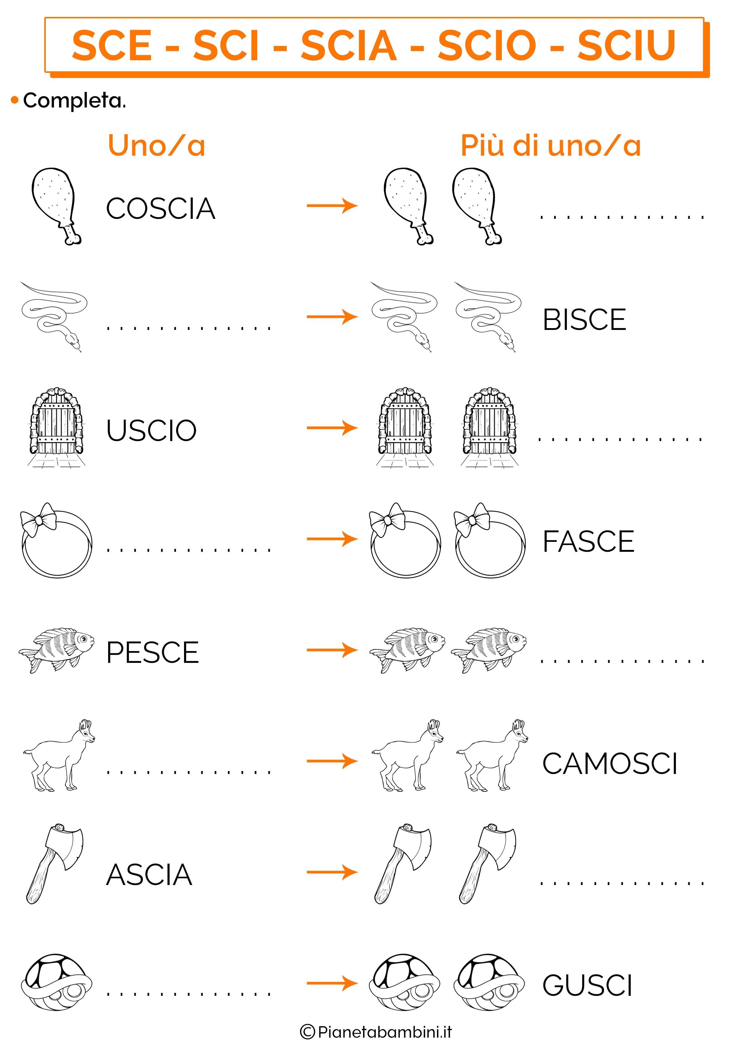 Singolare e plurale Completa parole SCIA-SCIO-SCIU-SCE-SCI