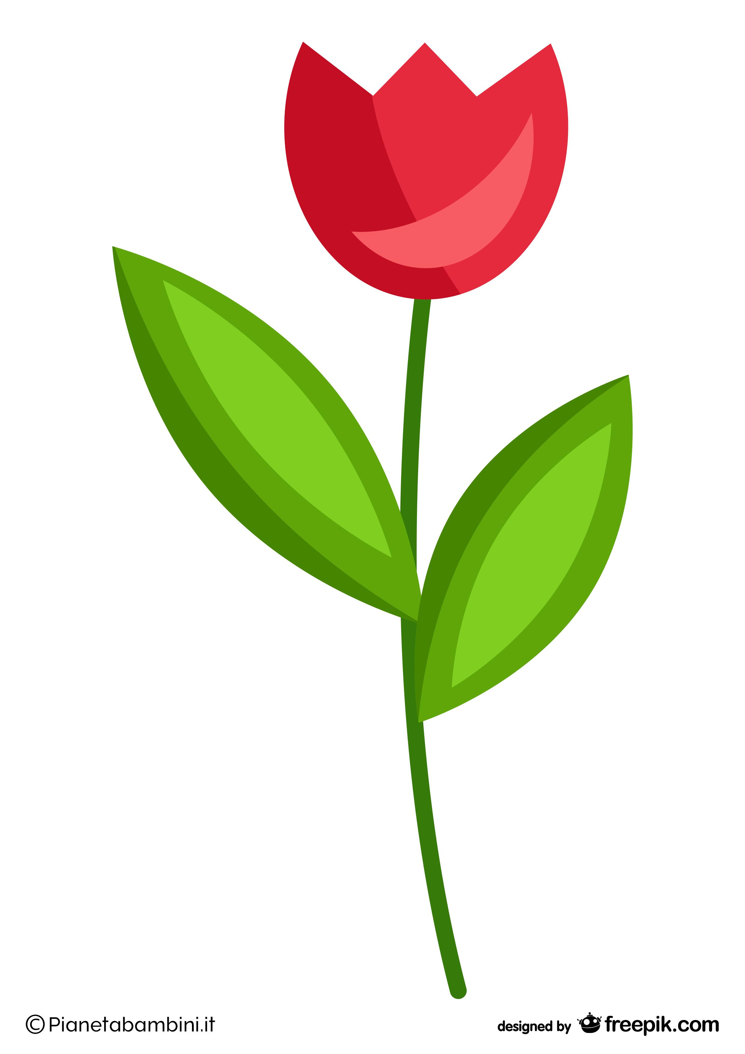 Addobbi-Primavera-Fiore-2