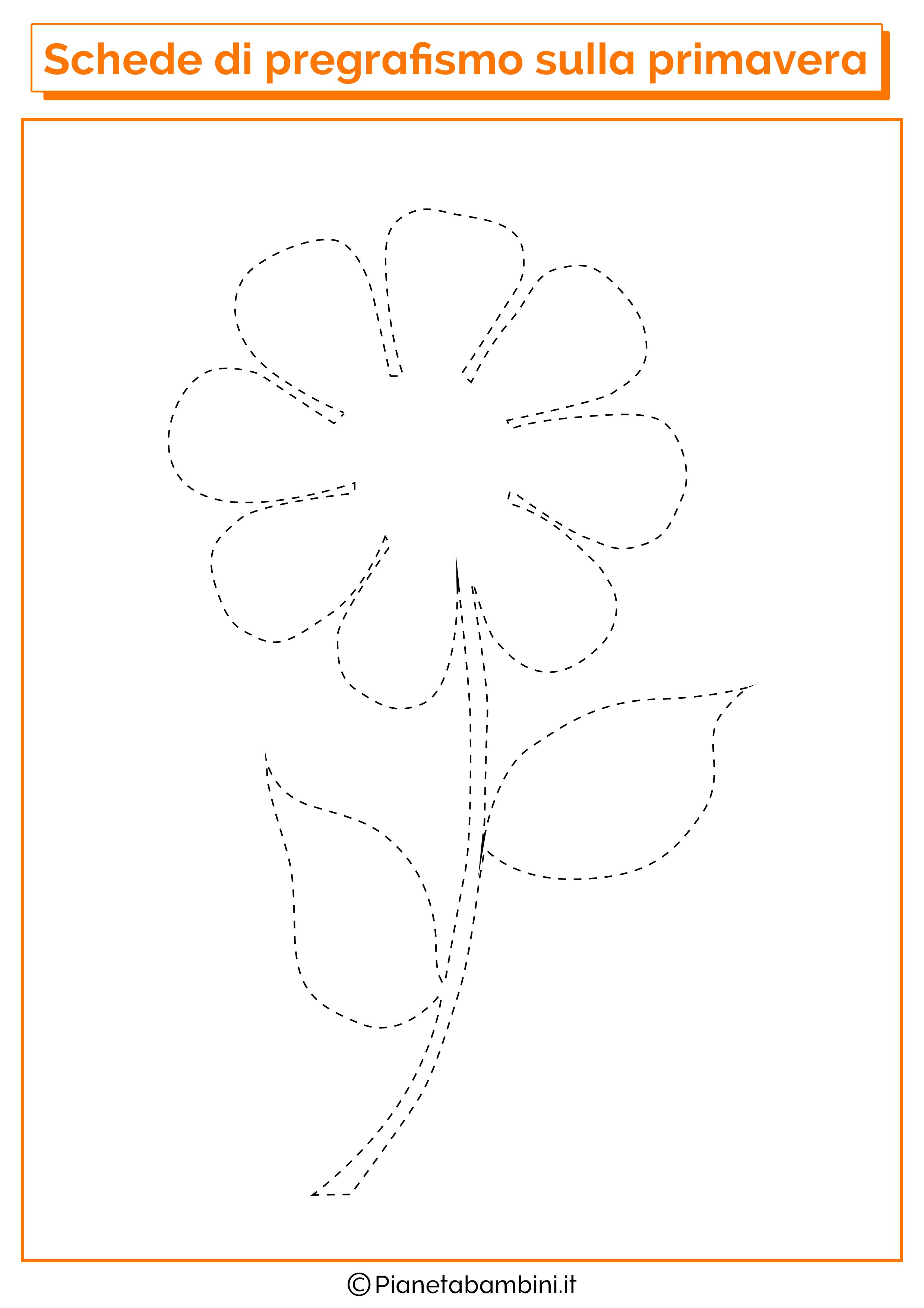 Pregrafismo-Primavera-Margherita