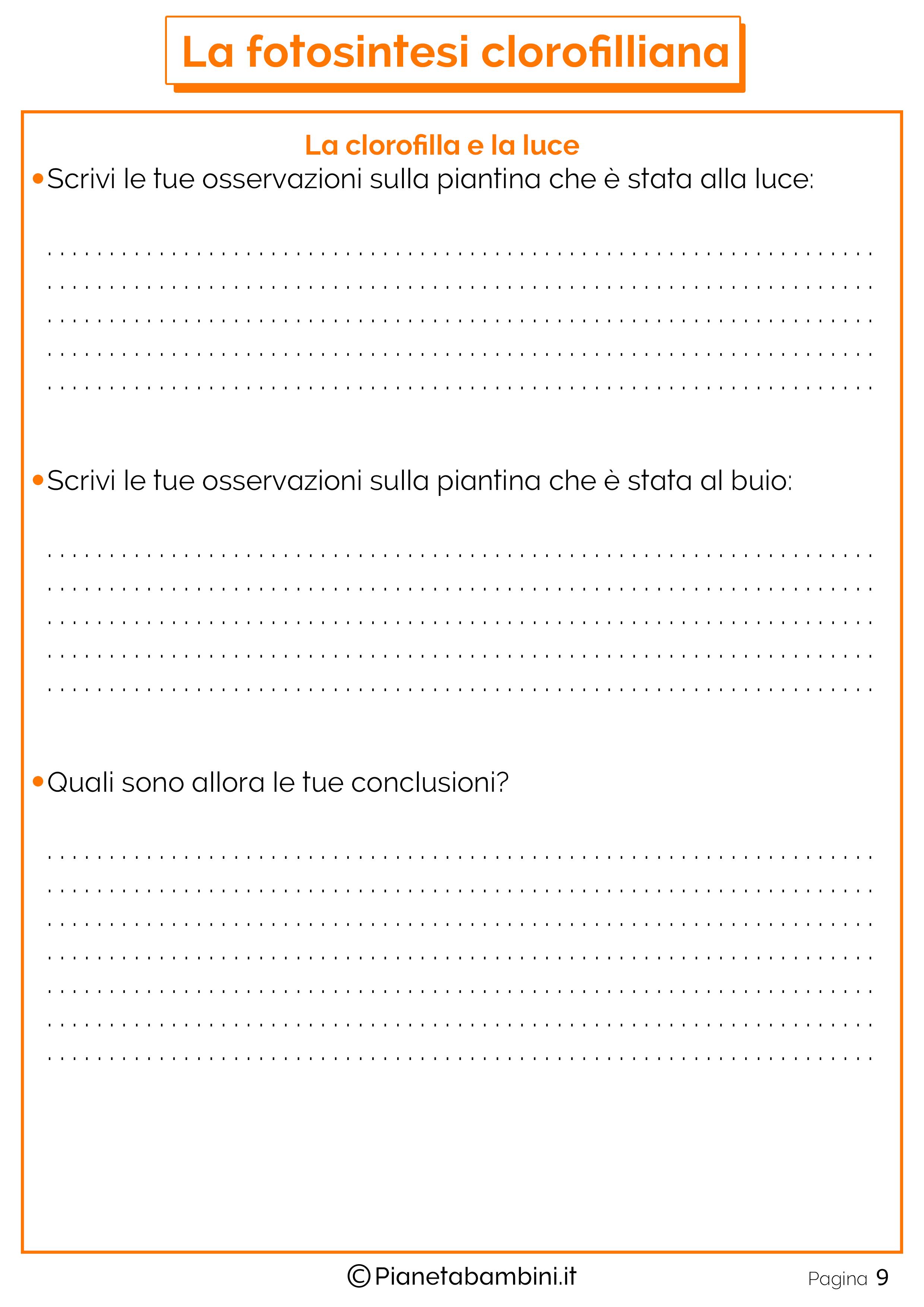 Schede-Didattiche-Fotosintesi-Clorofilliana-9