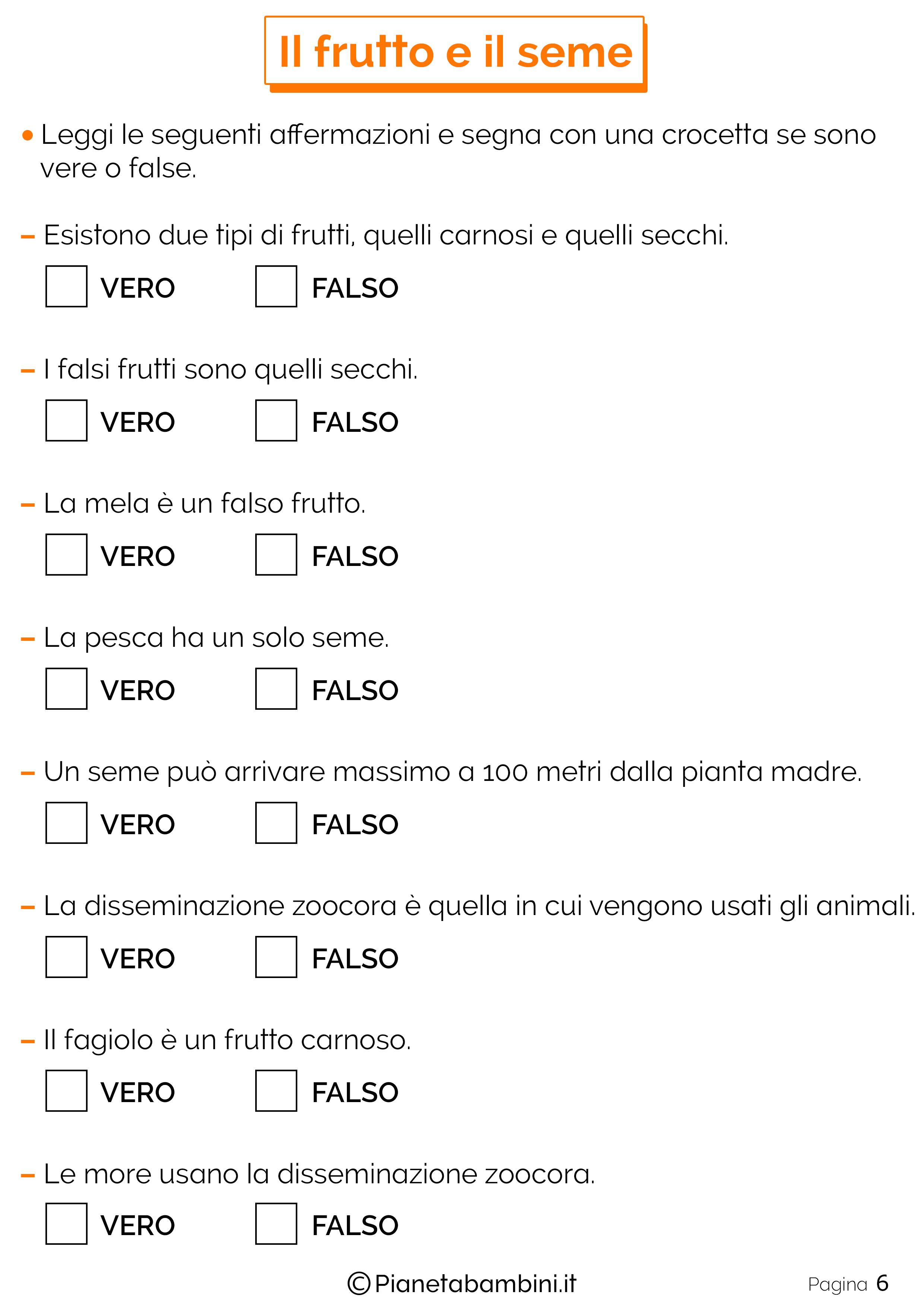 Frutto-Seme-Schede-Didattiche