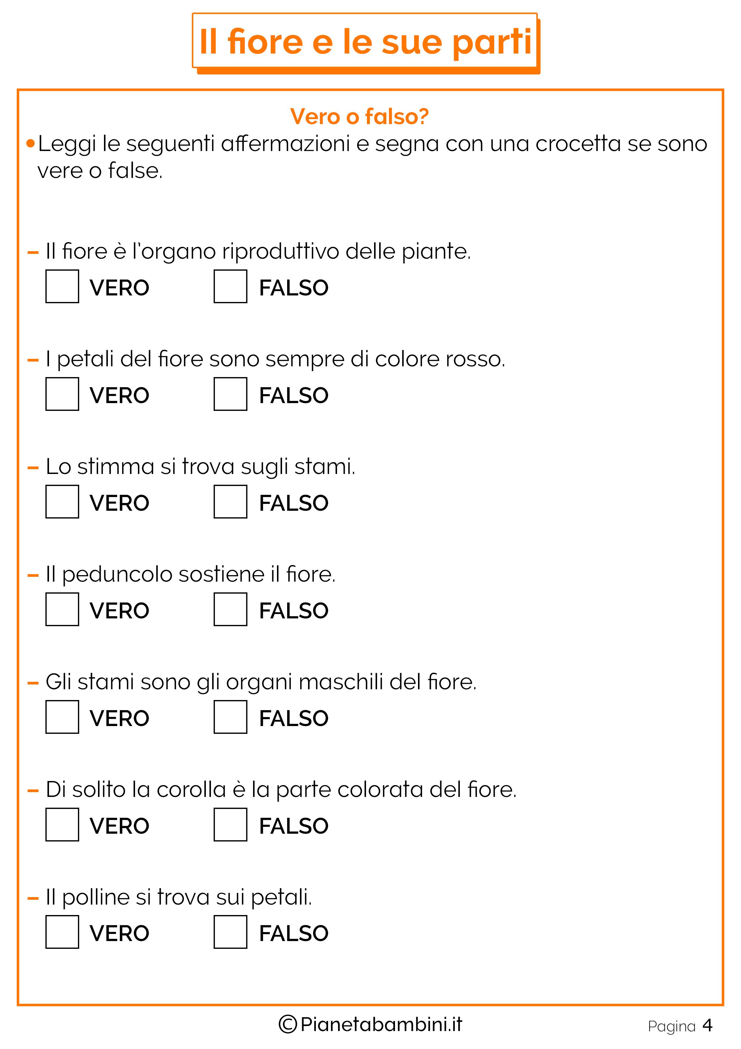 Schede-Didattiche-Parti-Fiore-2