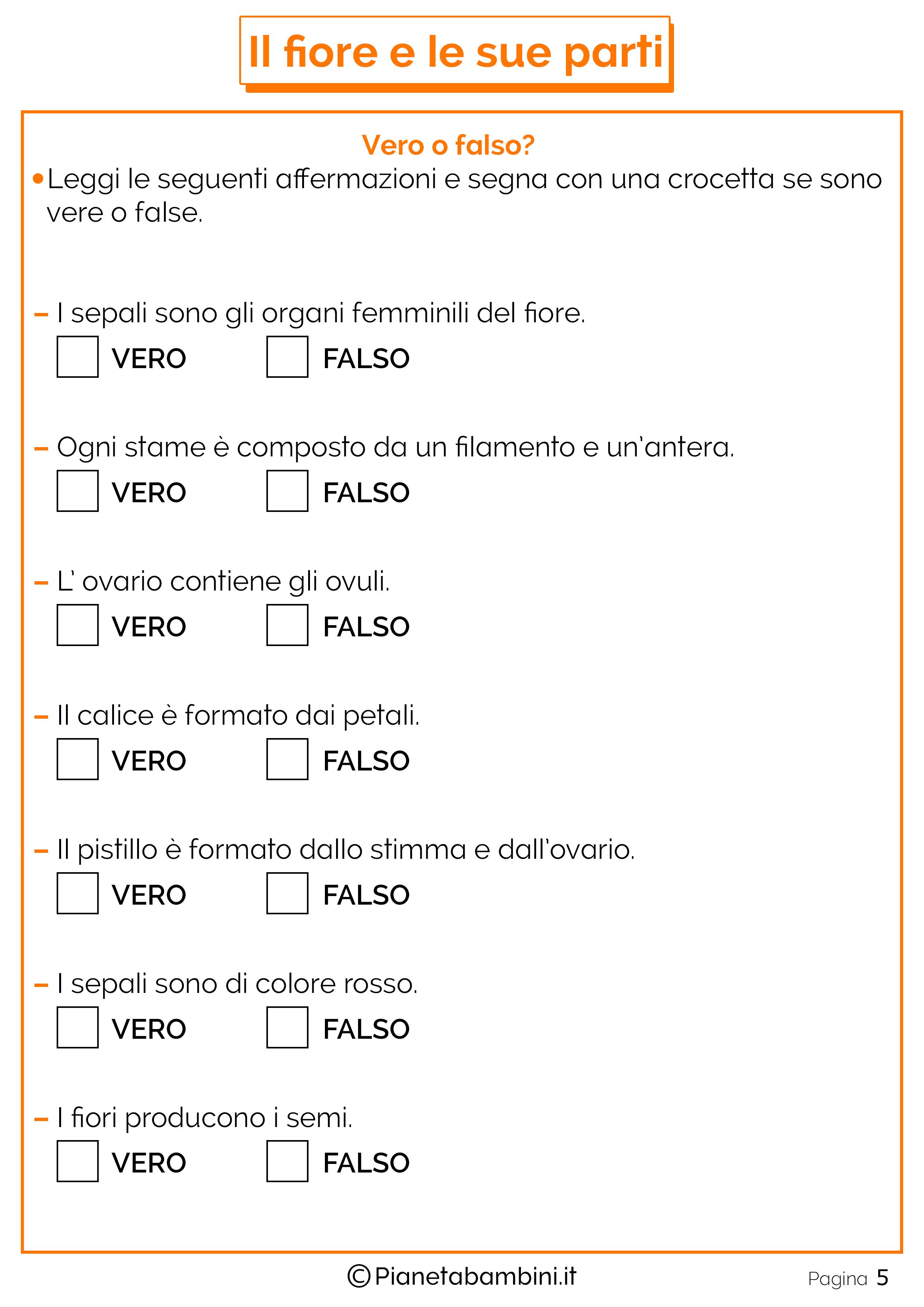 Schede-Didattiche-Parti-Fiore-3