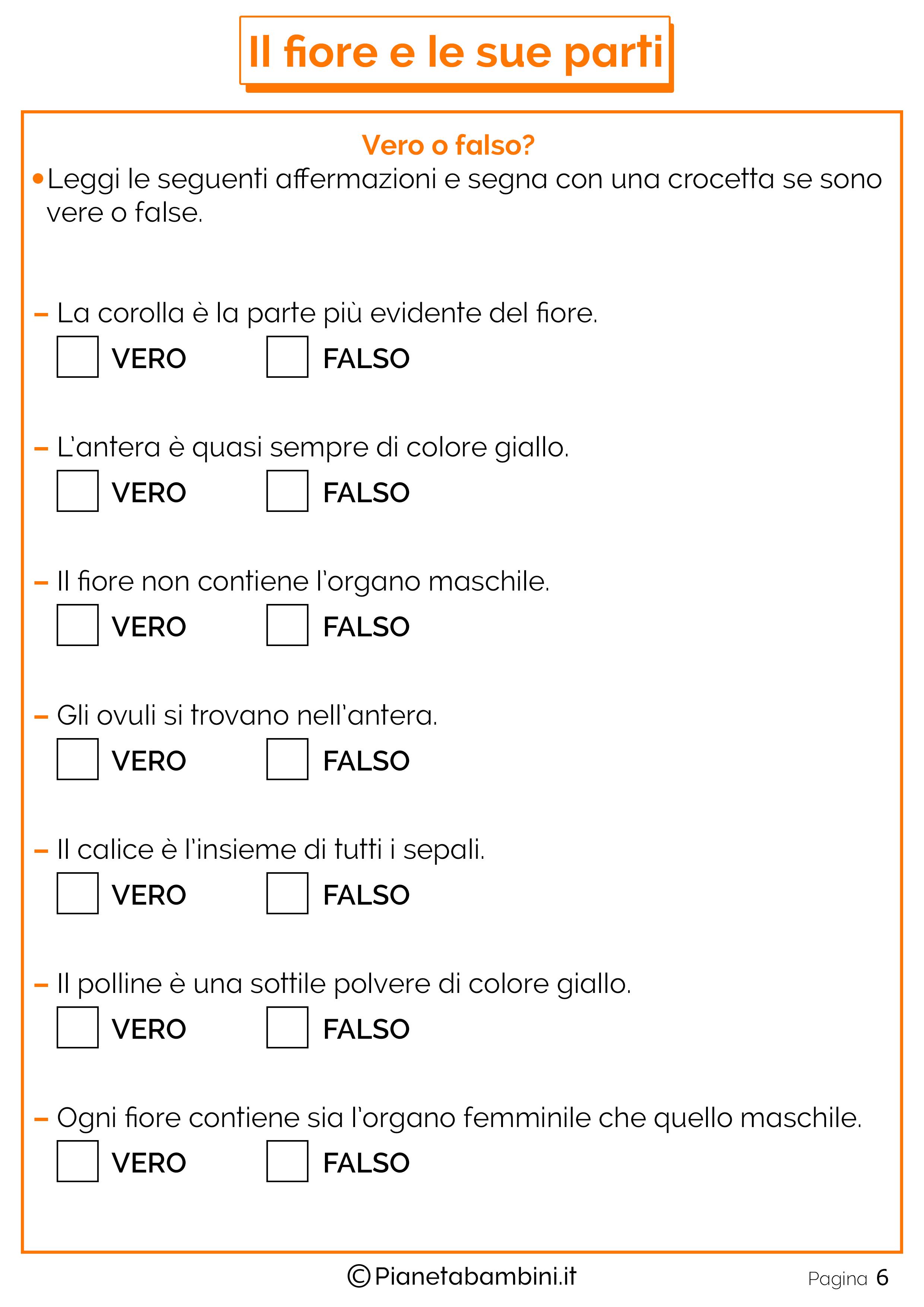 Schede-Didattiche-Parti-Fiore-4