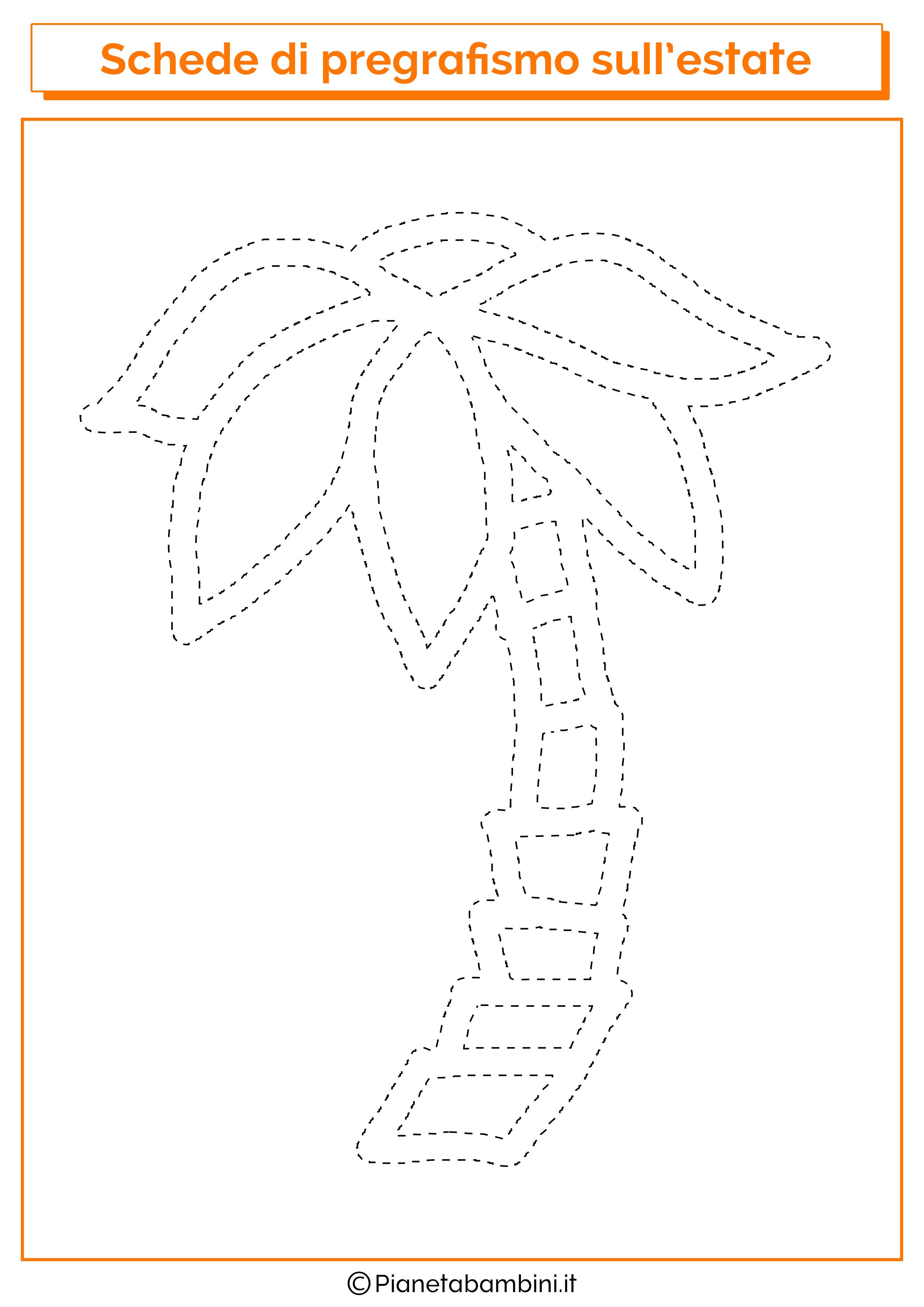 Scheda di pregrafismo sulla palma