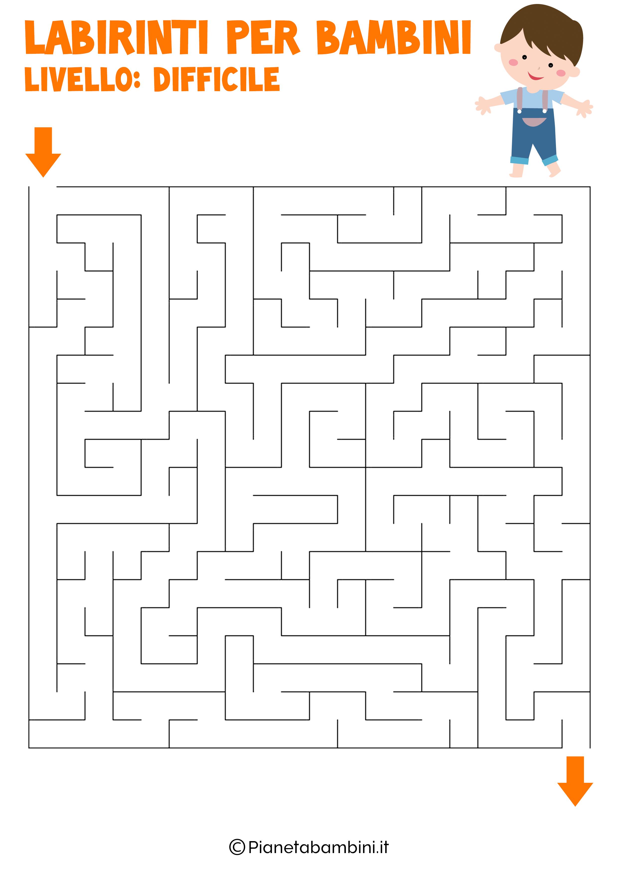 Labirinto difficile per bambini numero 14