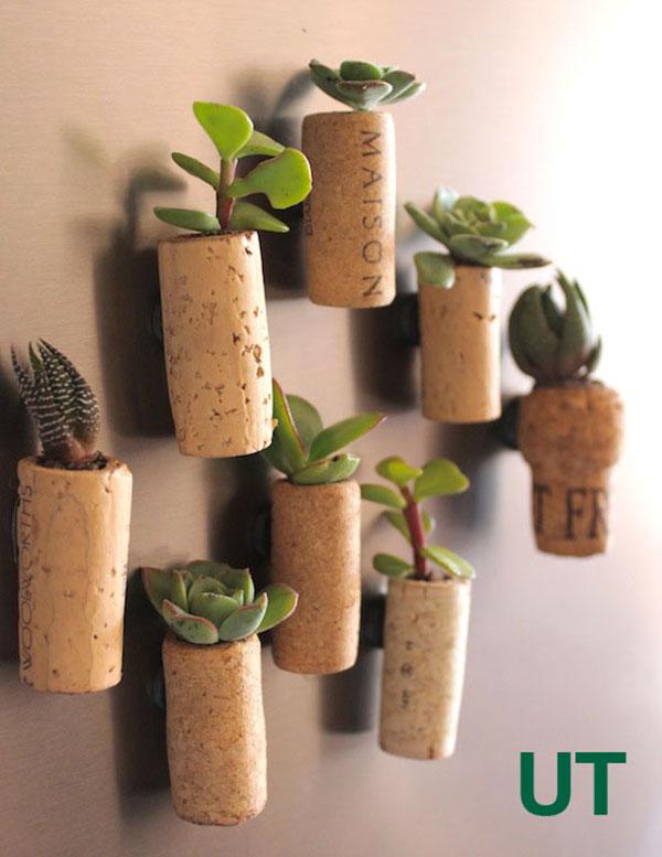Come creare dei vasetti per piante grasse con tappi di sughero