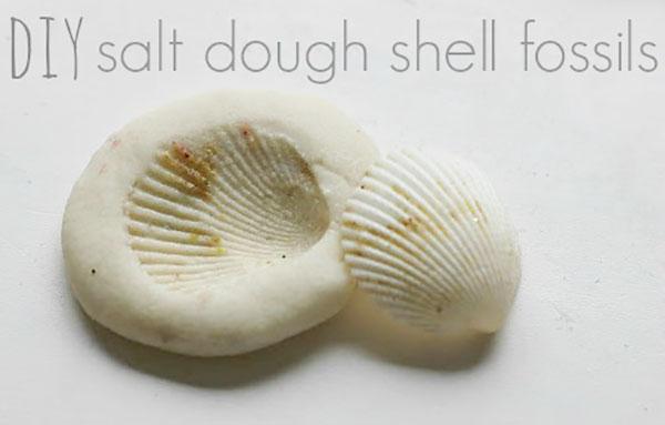 Come creare dei fossili di conchiglia con la pasta di sale