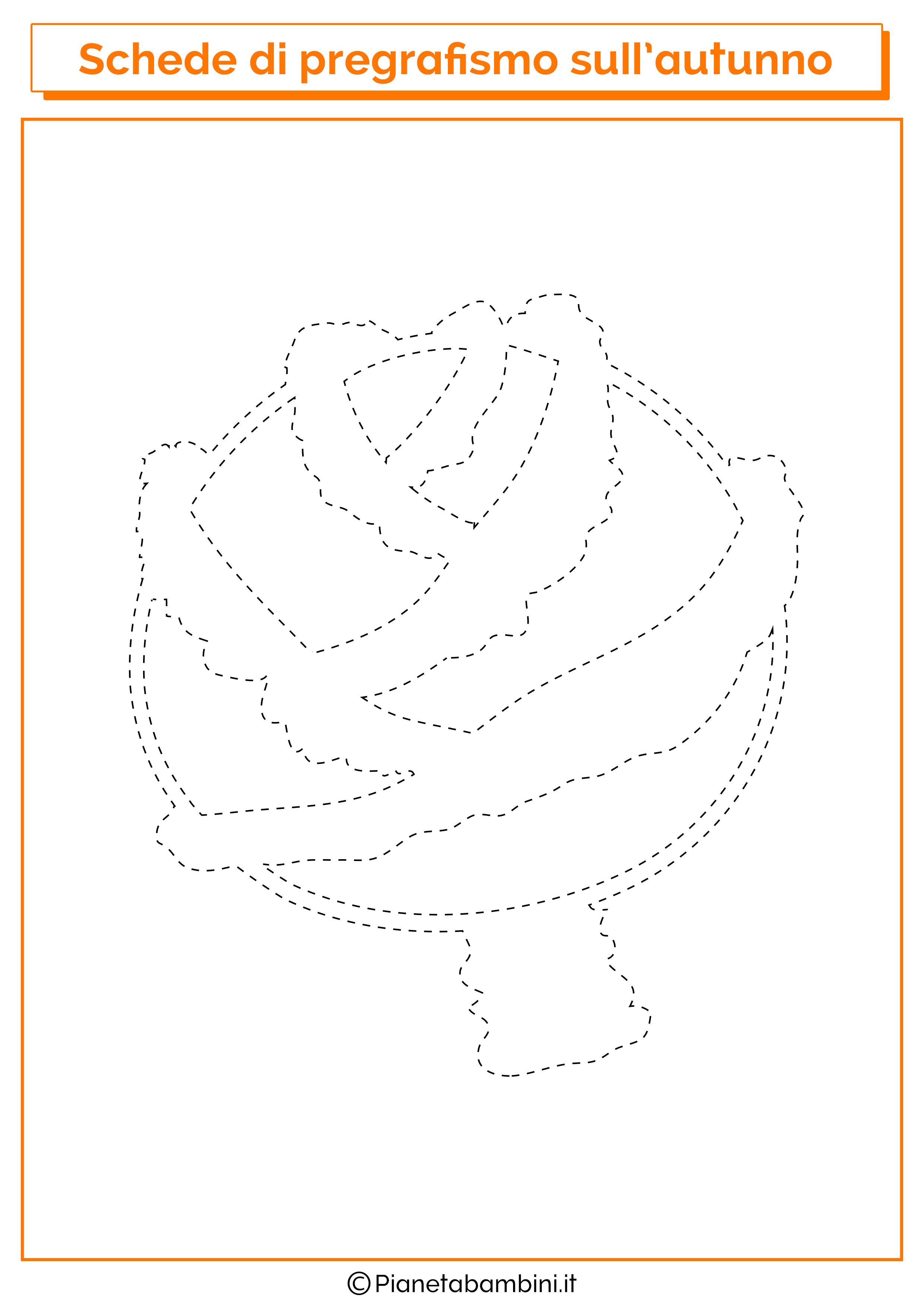 Scheda pregrafismo autunno cavolo cappuccio