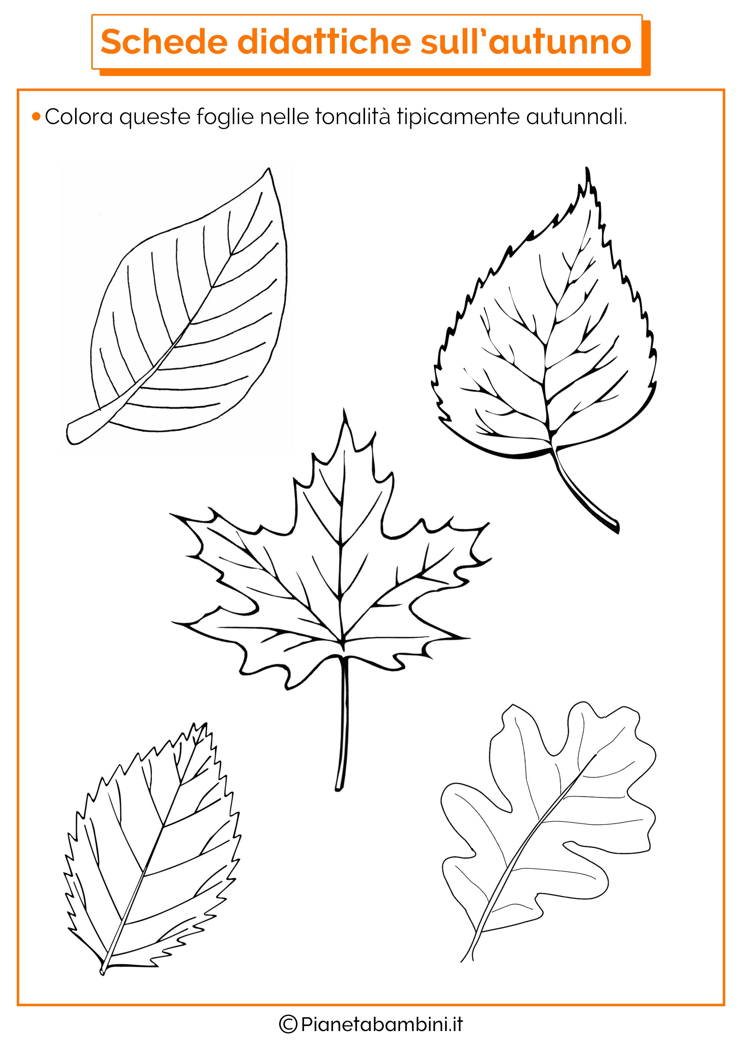 Schede didattiche sull 39 autunno per la scuola dell 39 infanzia - Numero di fogli di lavoro per bambini ...