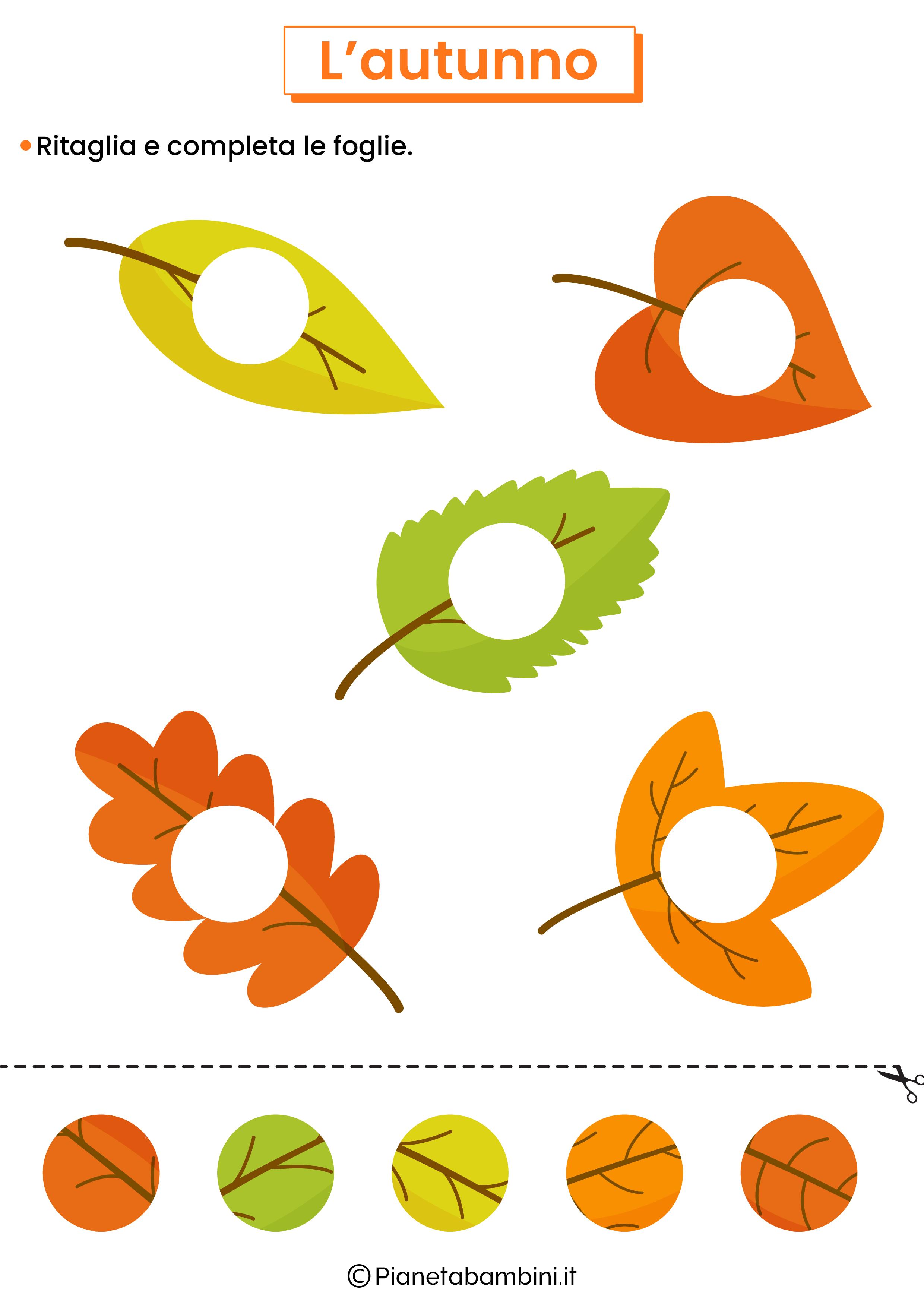 Scheda didattica sull'autunno per la scuola dell'infanzia 7