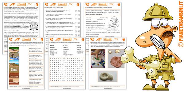 Schede didattiche sui fossili da stampare gratis
