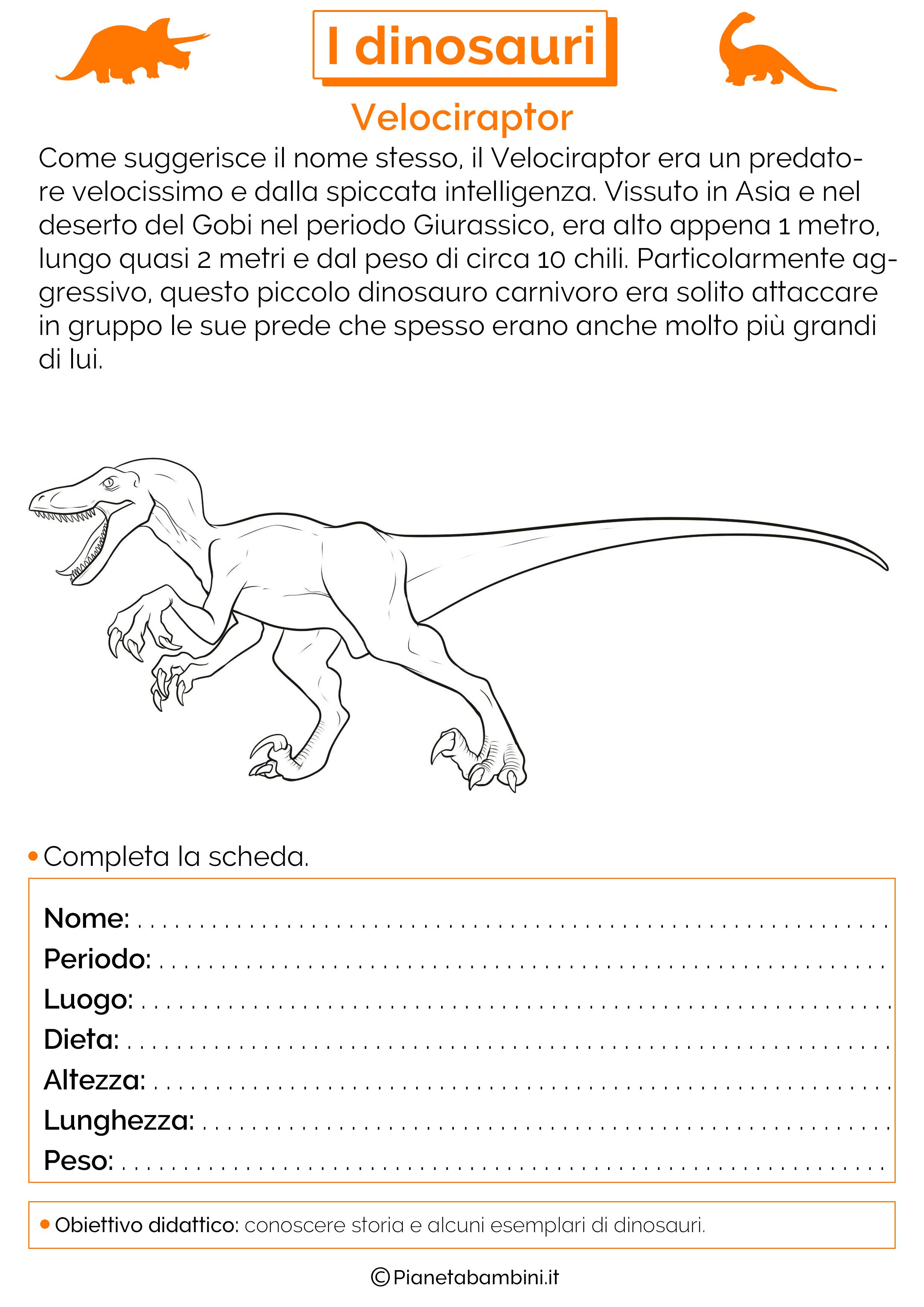 Esercizi sui dinosauri 12