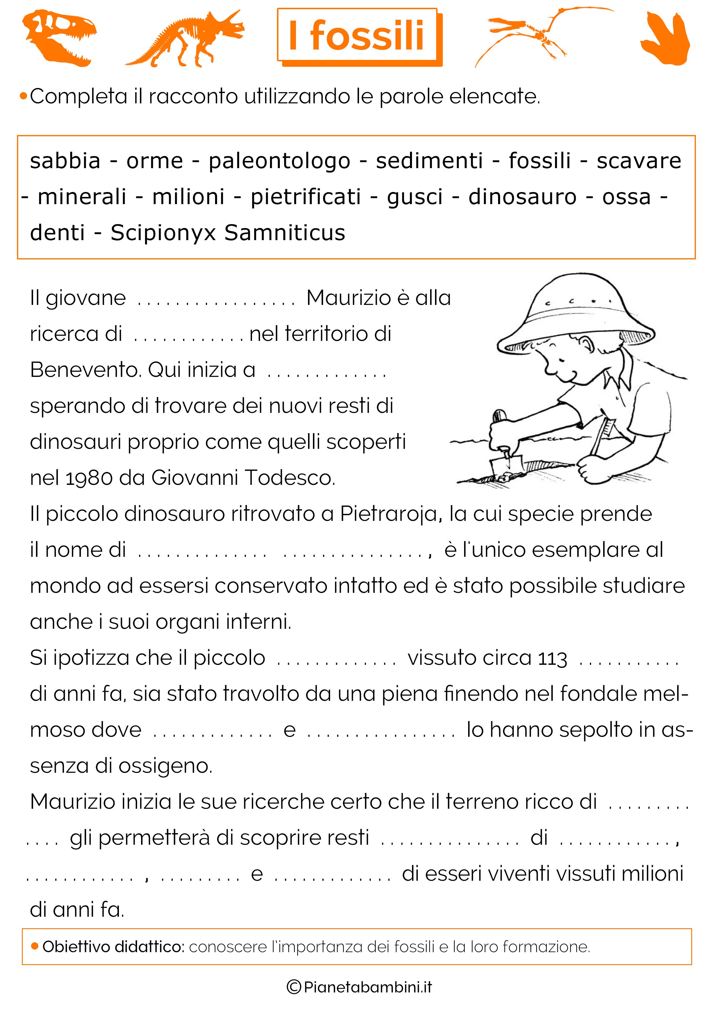 Super I Fossili: Schede Didattiche per la Scuola Primaria  FM69