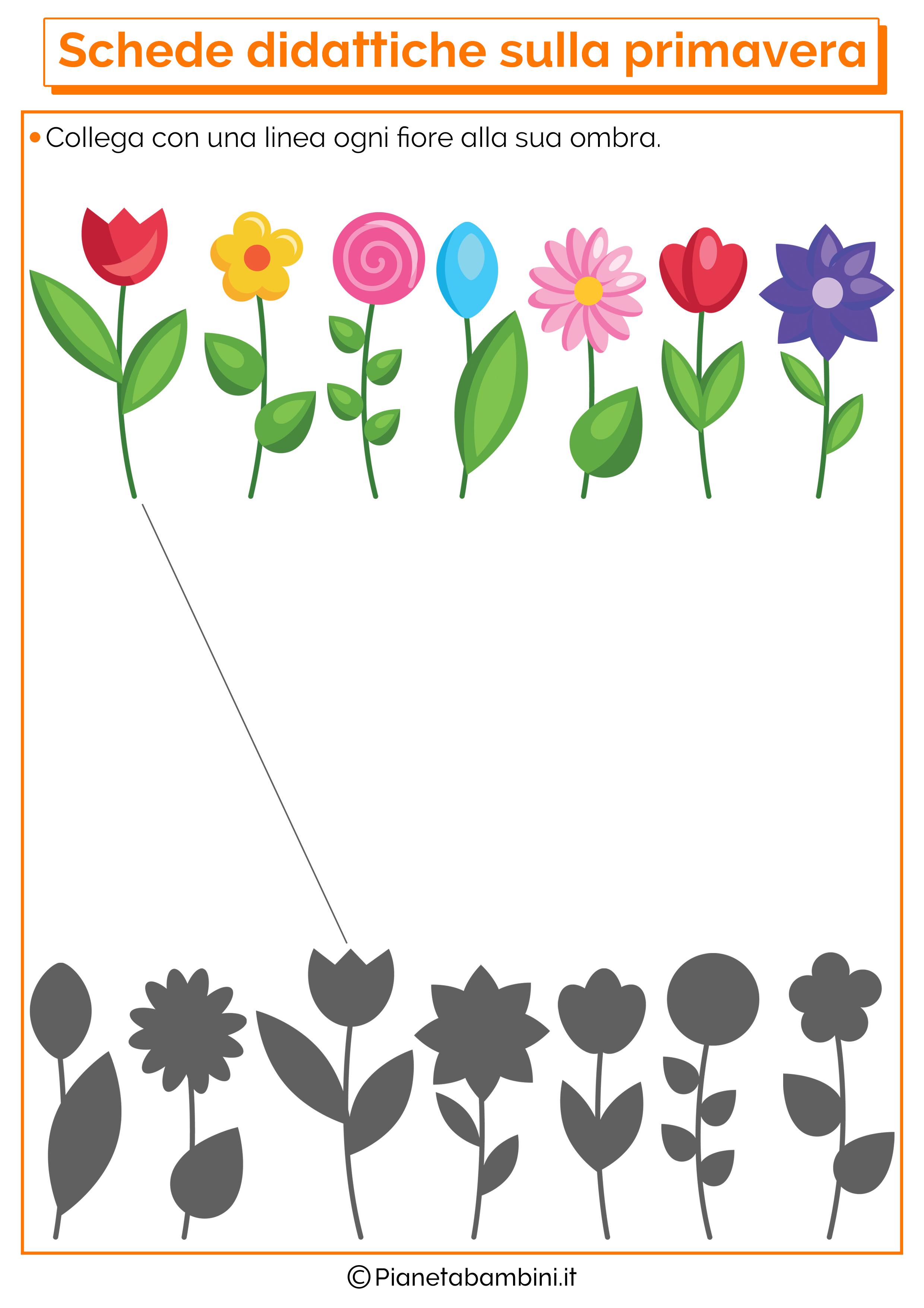 Scheda didattica sulla primavera per la scuola dell'infanzia numero 8