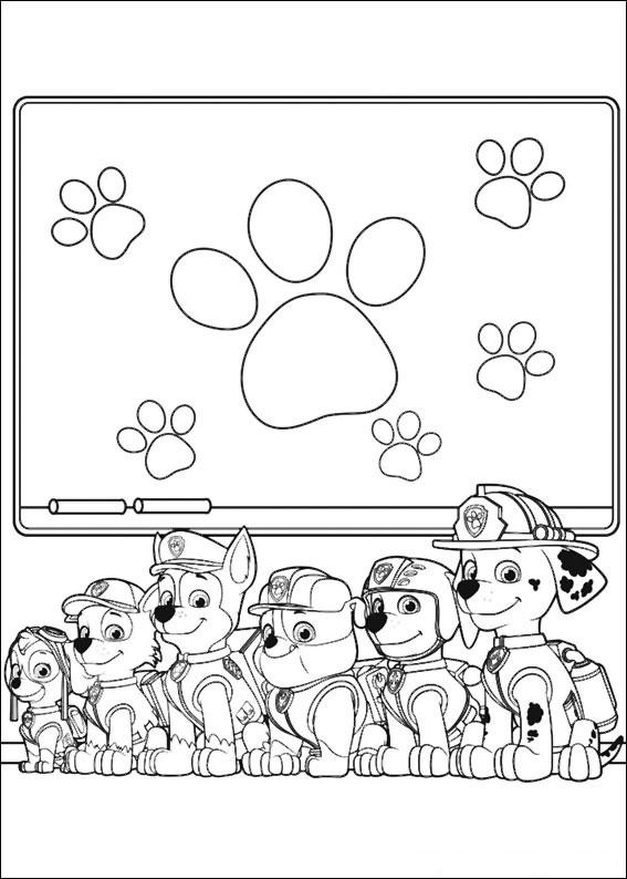 50 disegni di paw patrol da colorare