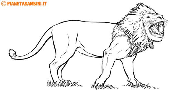 30 disegni di leoni da colorare for Disegni di animali per bambini
