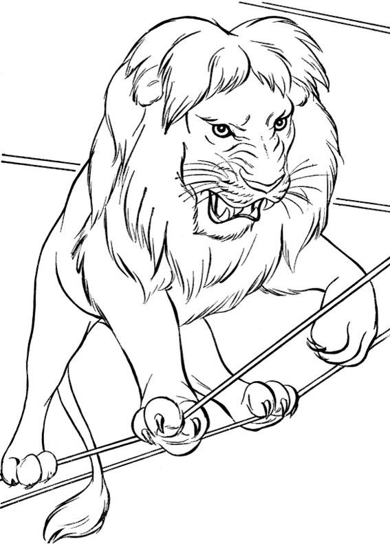 30 disegni di leoni da colorare - Disegno finestra da colorare ...