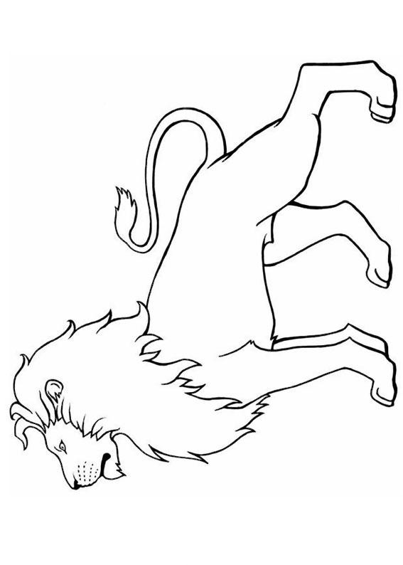 30 disegni di leoni da colorare for Disegni di squali per bambini