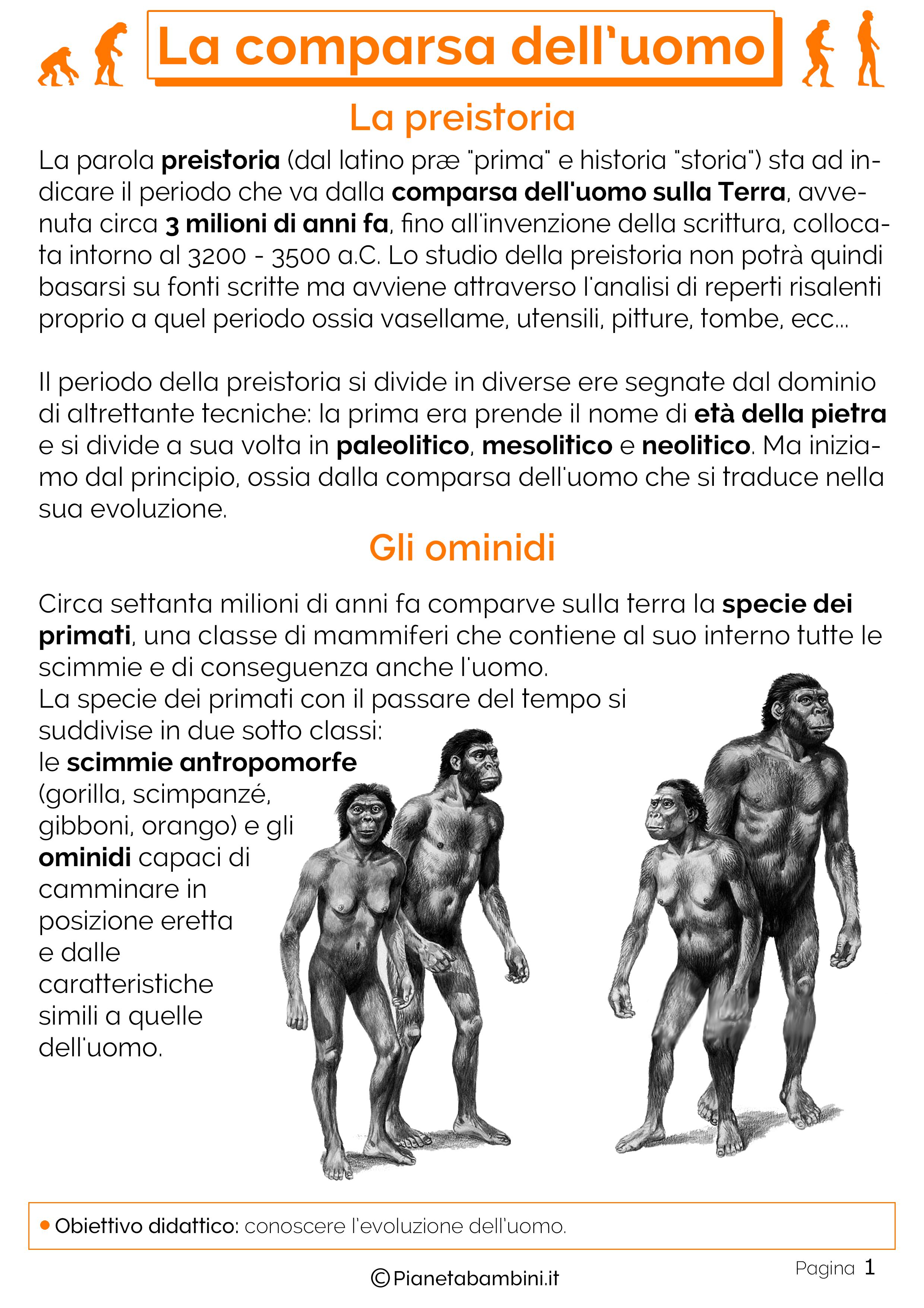 Esercizi sulla comparsa dell'uomo 1