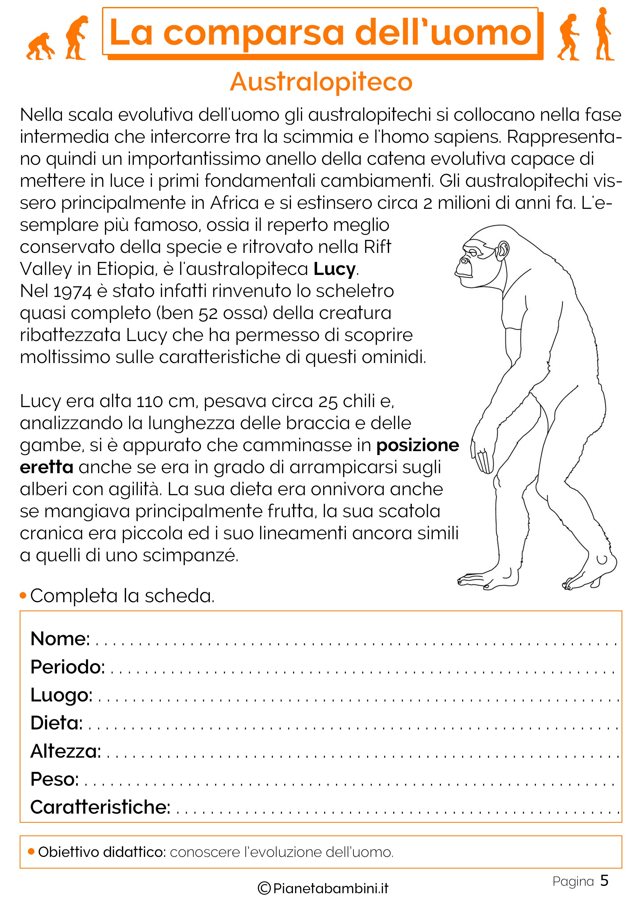 Esercizi sulla comparsa dell'uomo 5