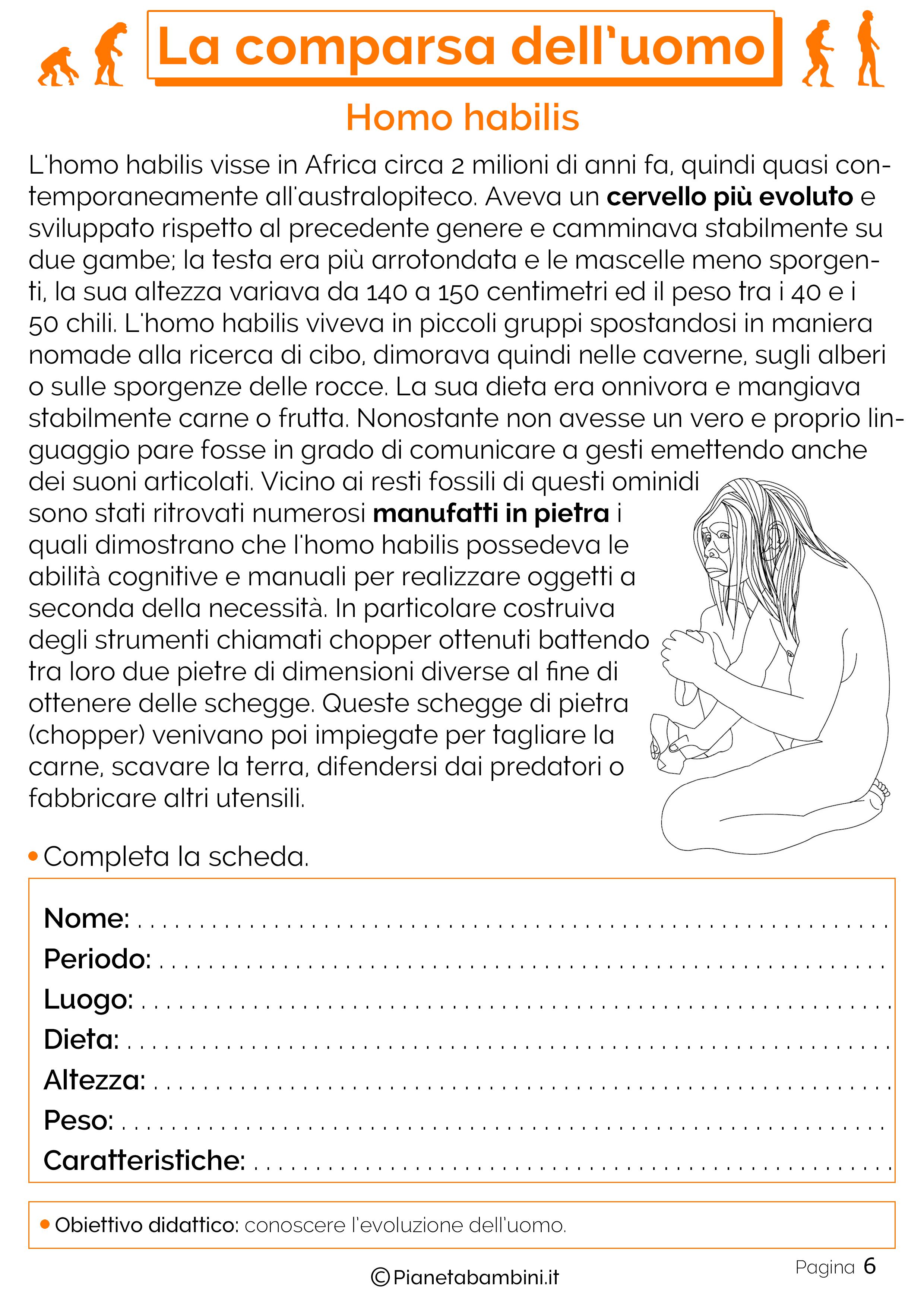 Esercizi sulla comparsa dell'uomo 6