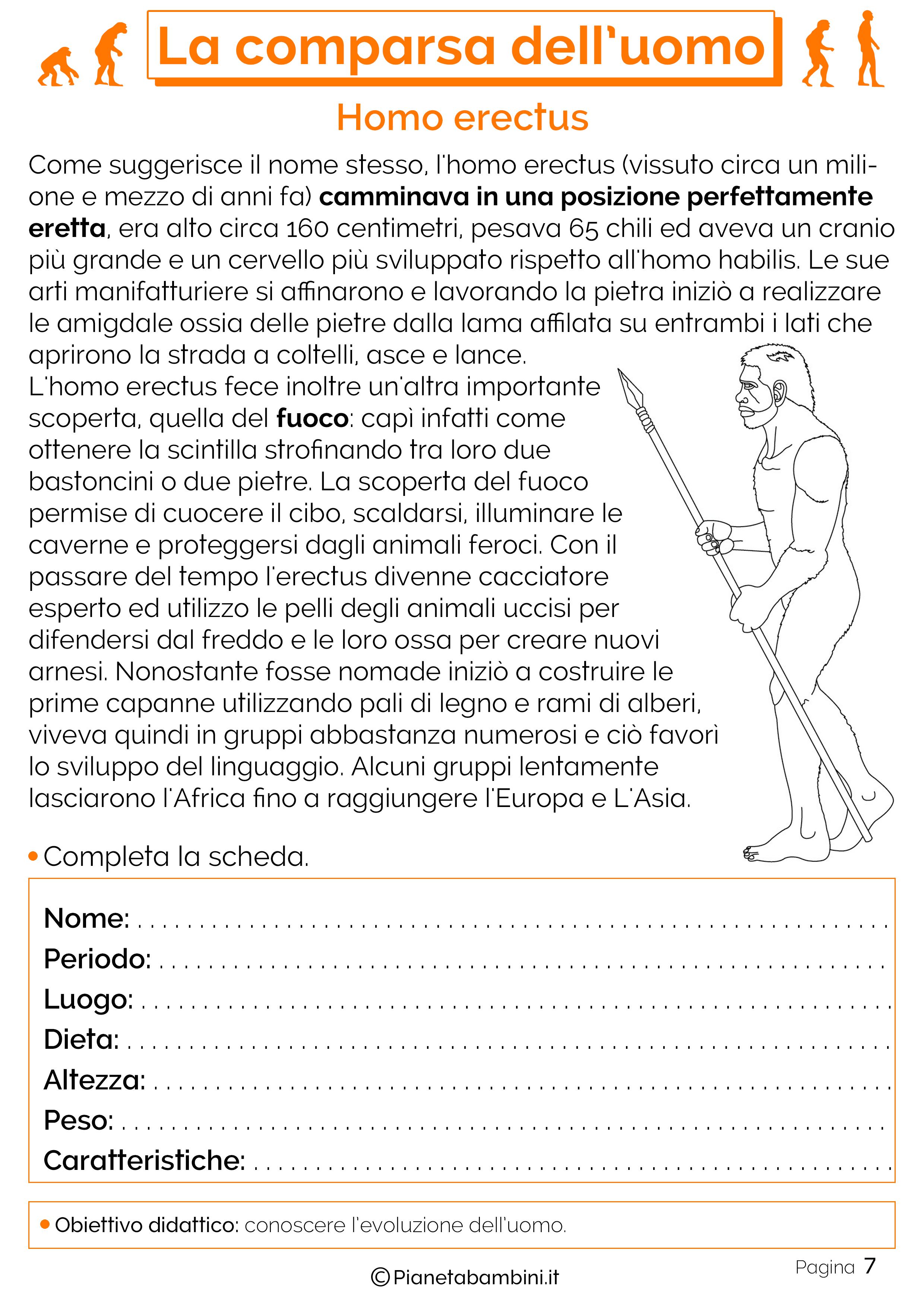 Esercizi sulla comparsa dell'uomo 7