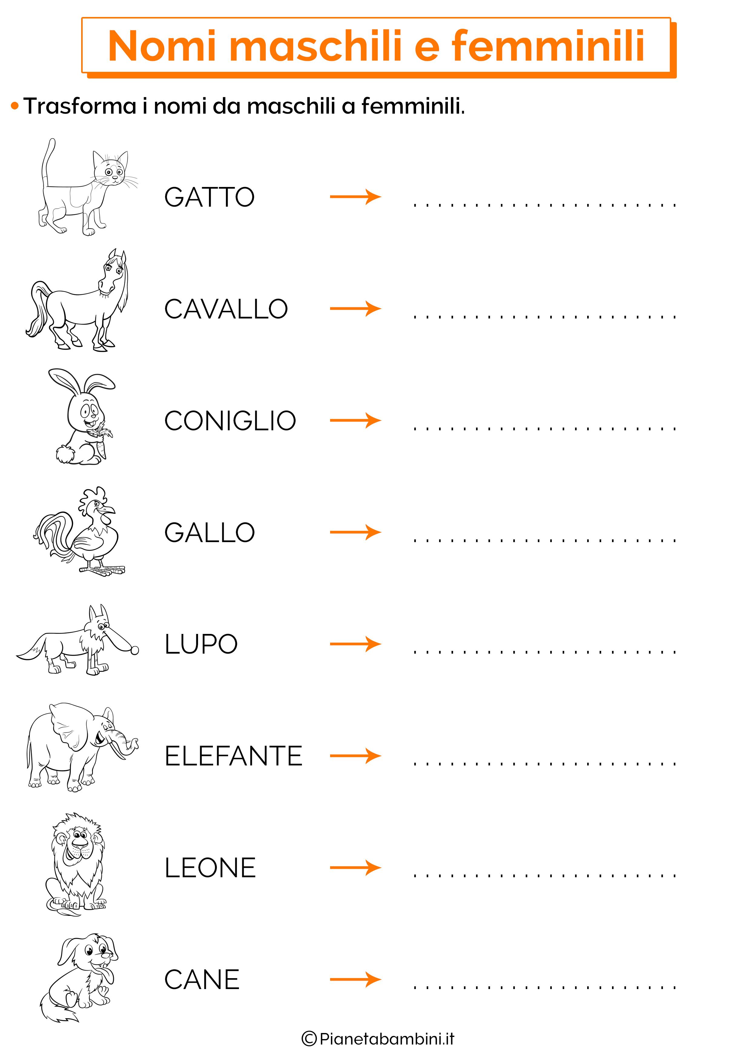 Scheda didattica sui nomi maschili e femminili 02