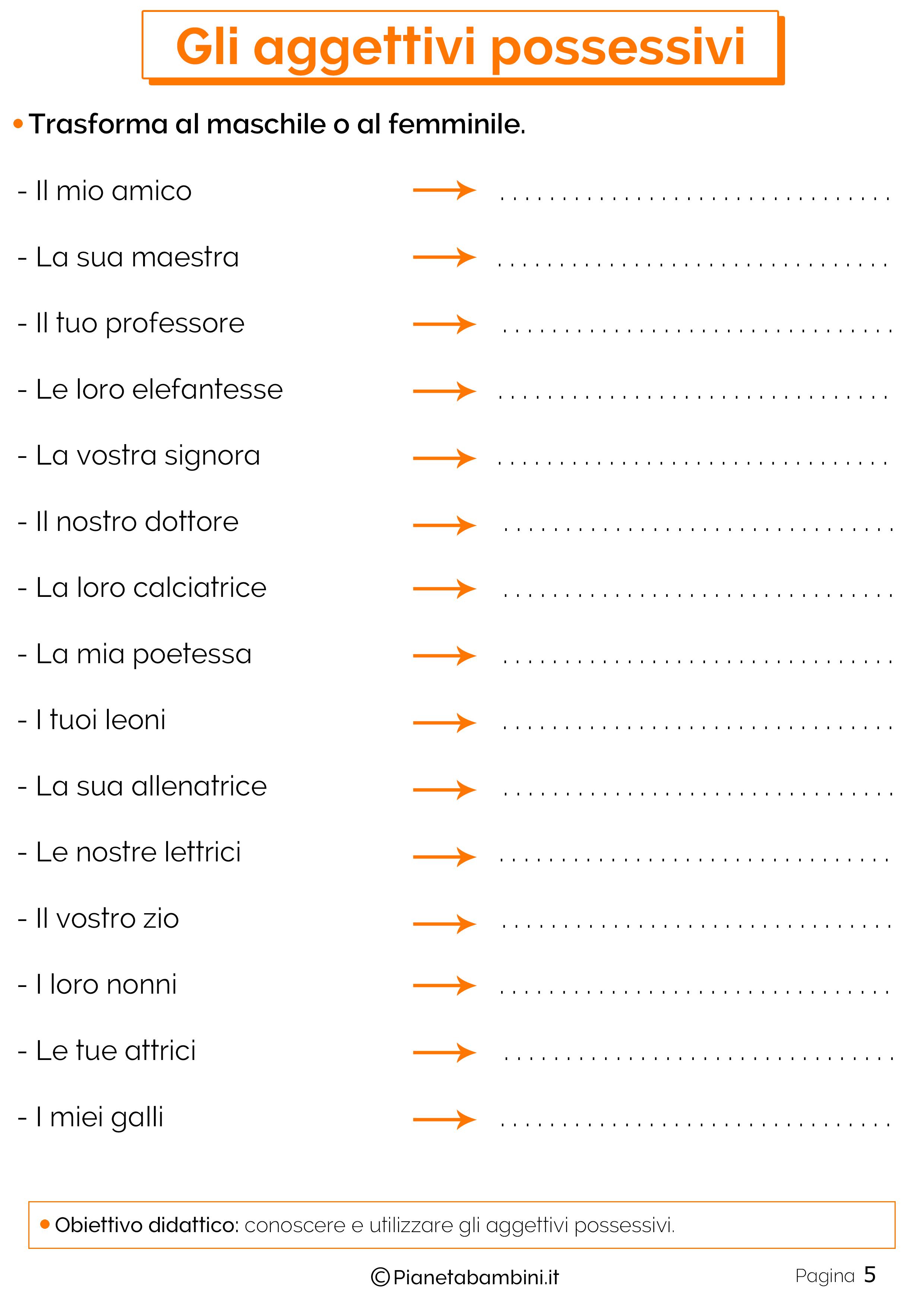 Esercizi sugli aggettivi Possessivi 5