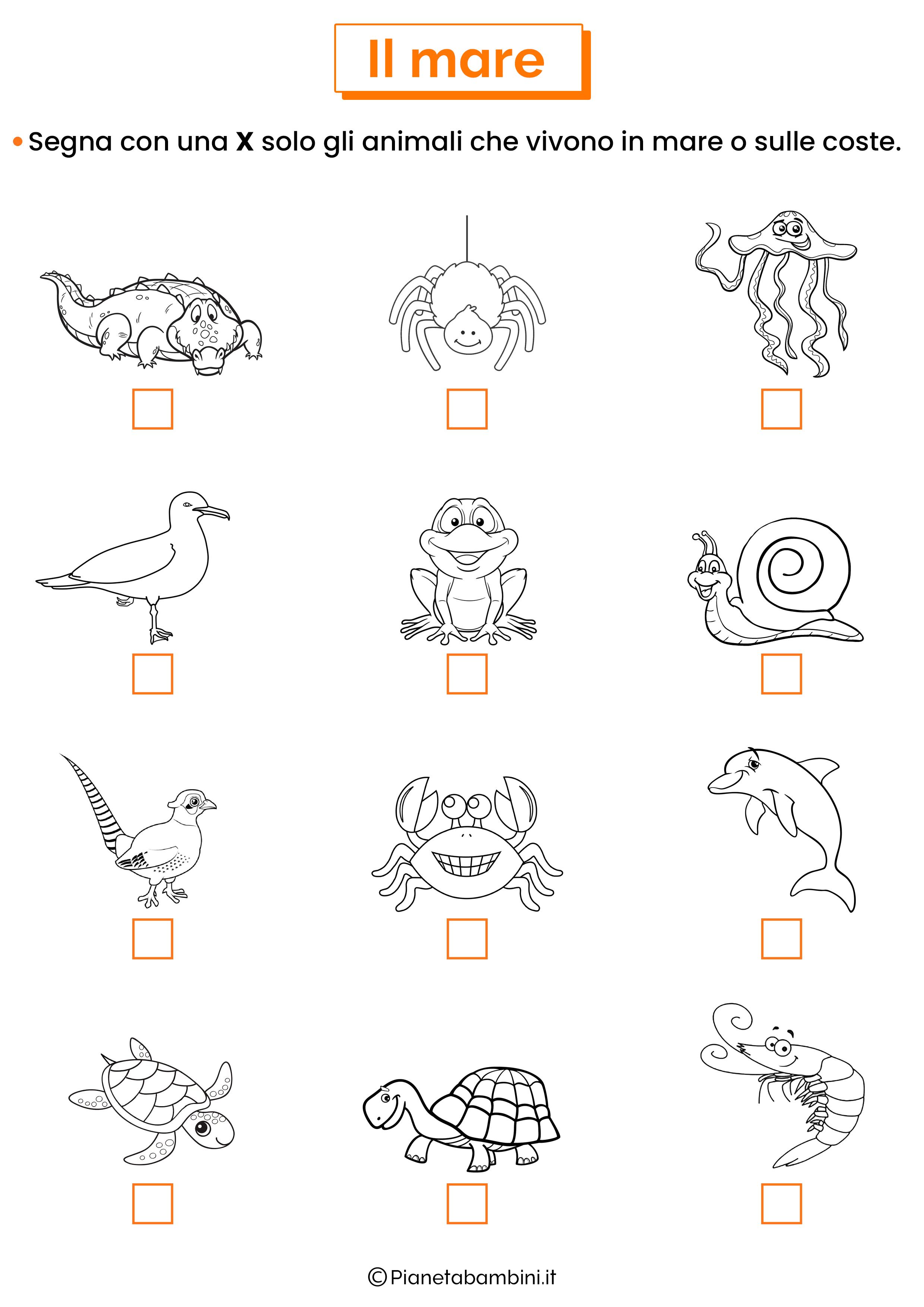 Esercizio sugli animali del mare