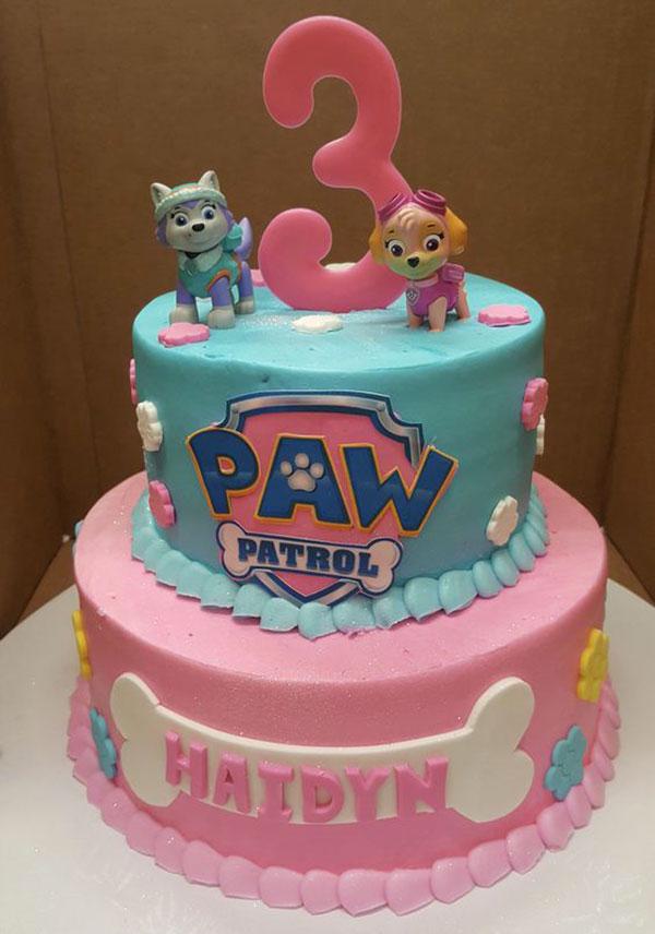 Foto della torta di Paw Patrol n.24