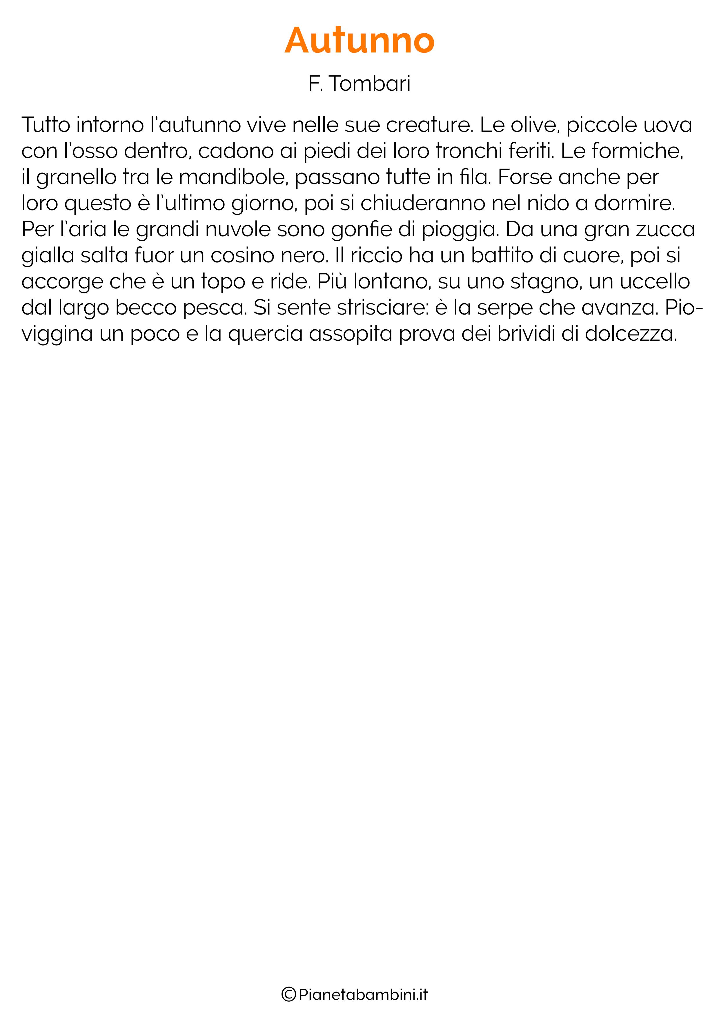 Dettato sull'autunno n.16