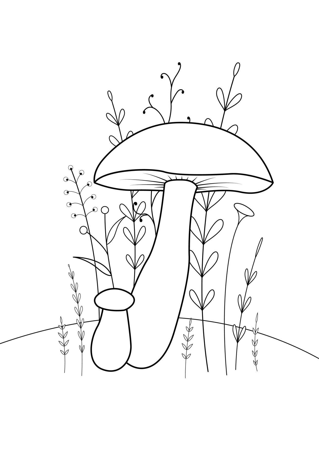 Disegno di funghi da colorare 11